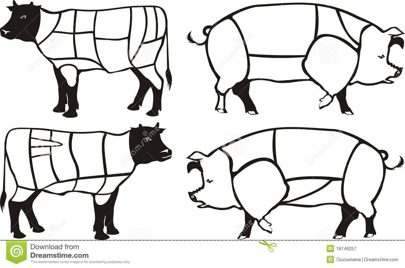 Pork Amp Beef Diagrams Stock Vector Illustration Of Food