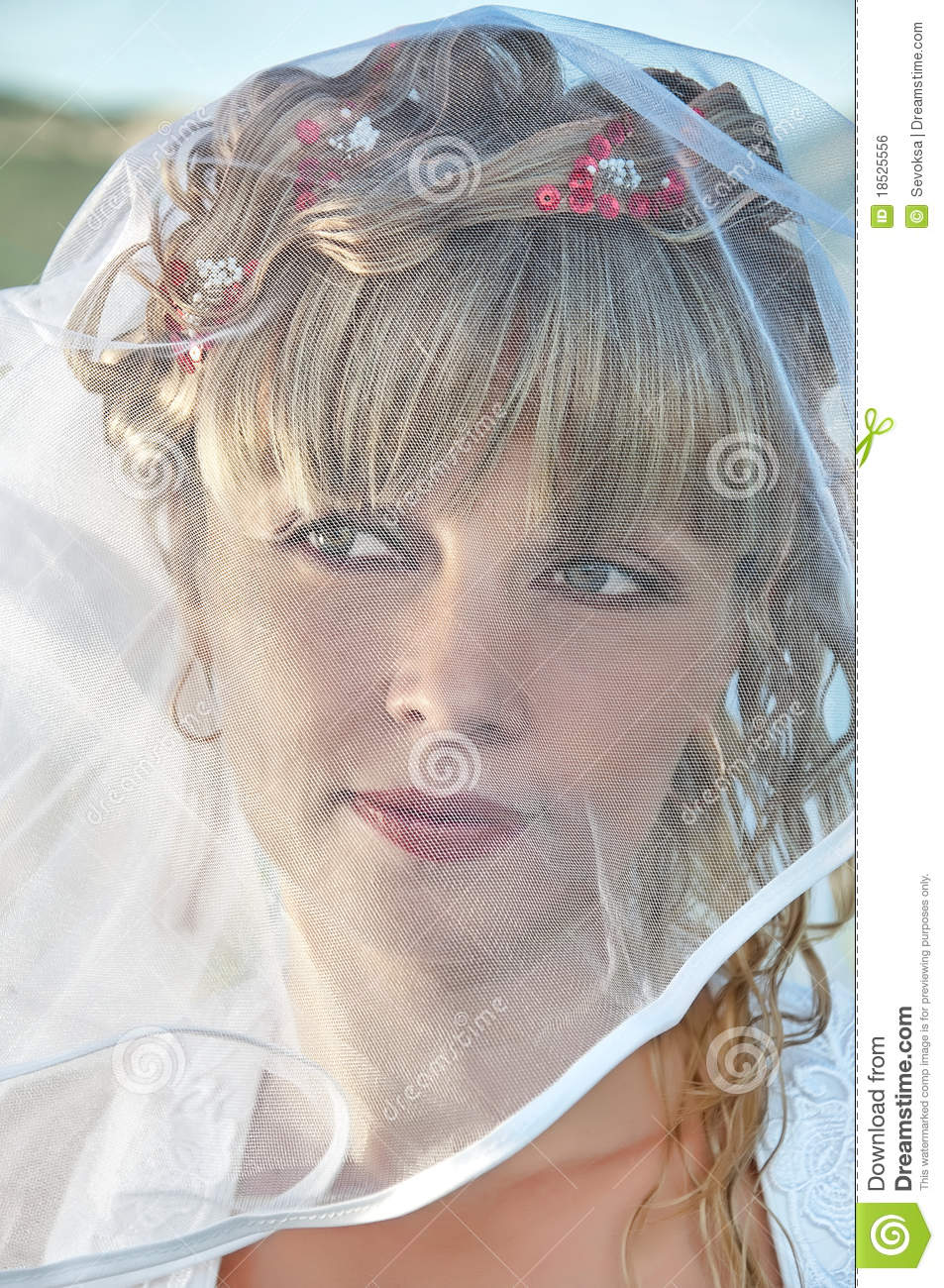 Portrait Of A Beautiful Bride With Veil Stock Photo