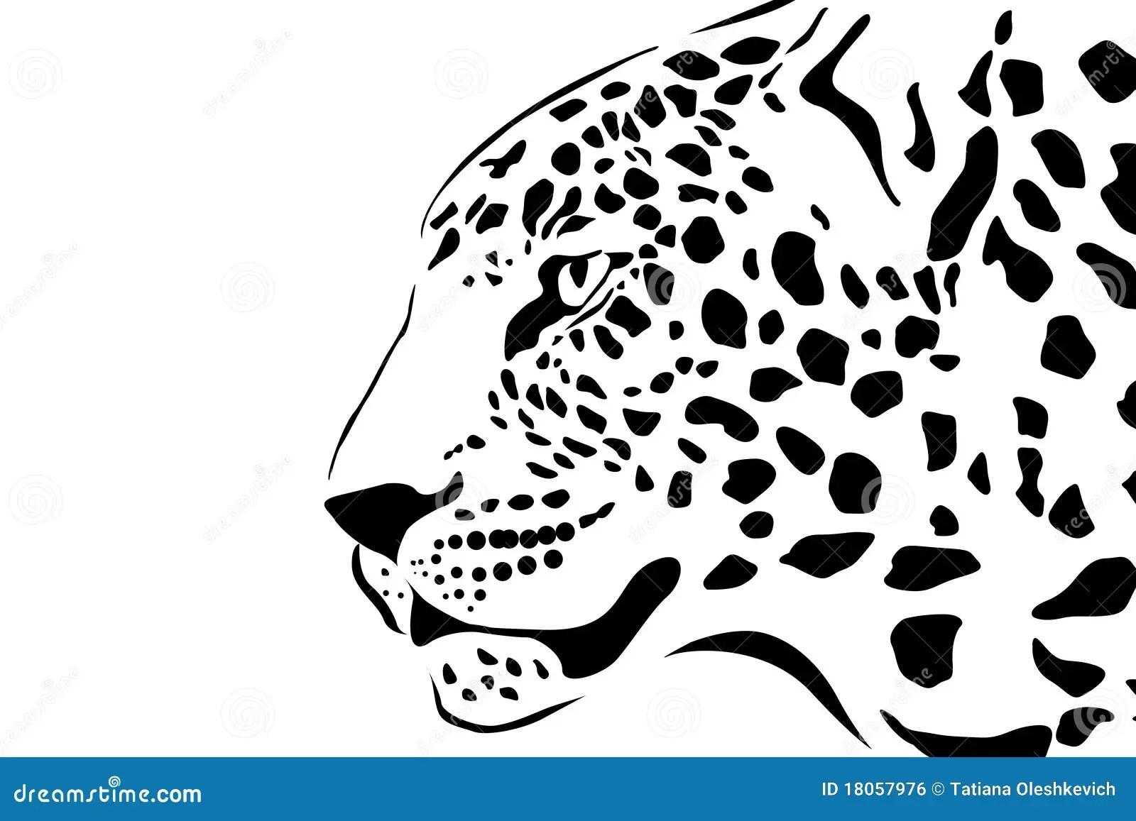 Portrait Of Leopard Stock Illustration Illustration Of