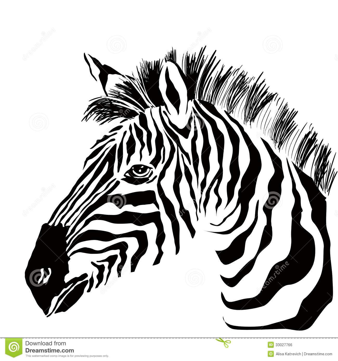 Portrait Of Zebra On The White Background Stock Vector