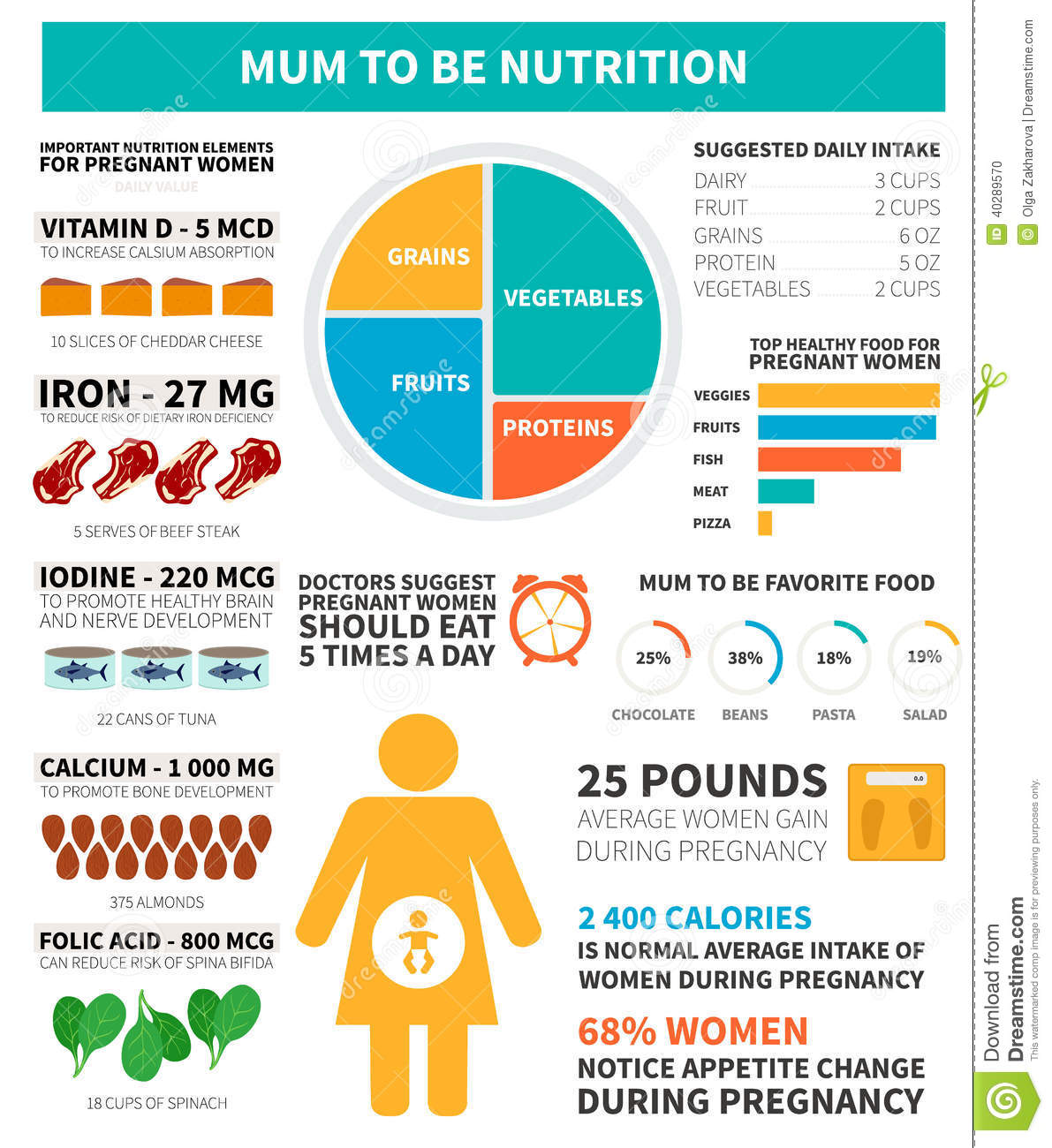 Pregnancy Nutrition Infographic Stock Vector