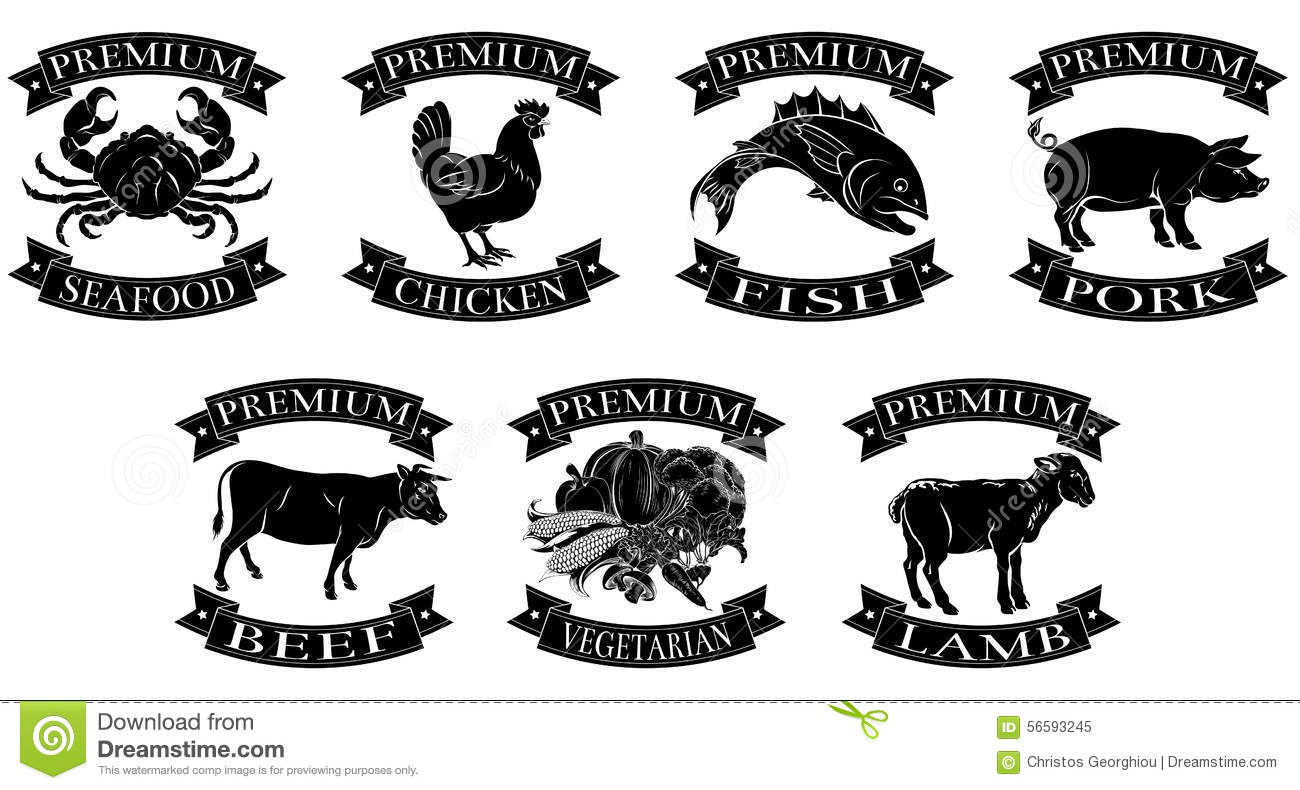 Premium Food Groups Set Stock Vector Illustration Of