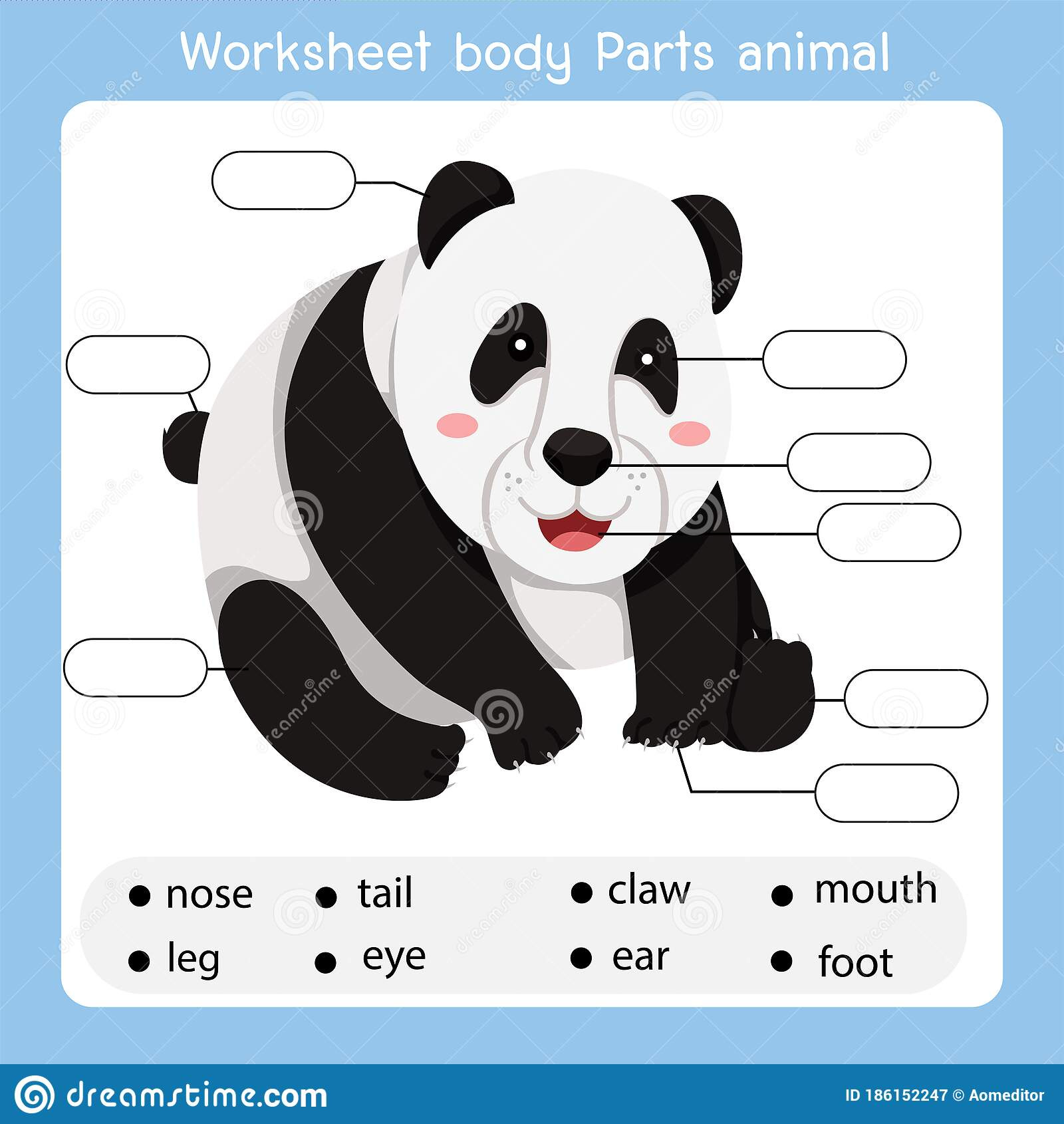 Illustrator Of Worksheet Body Parts Panda Animal Stock