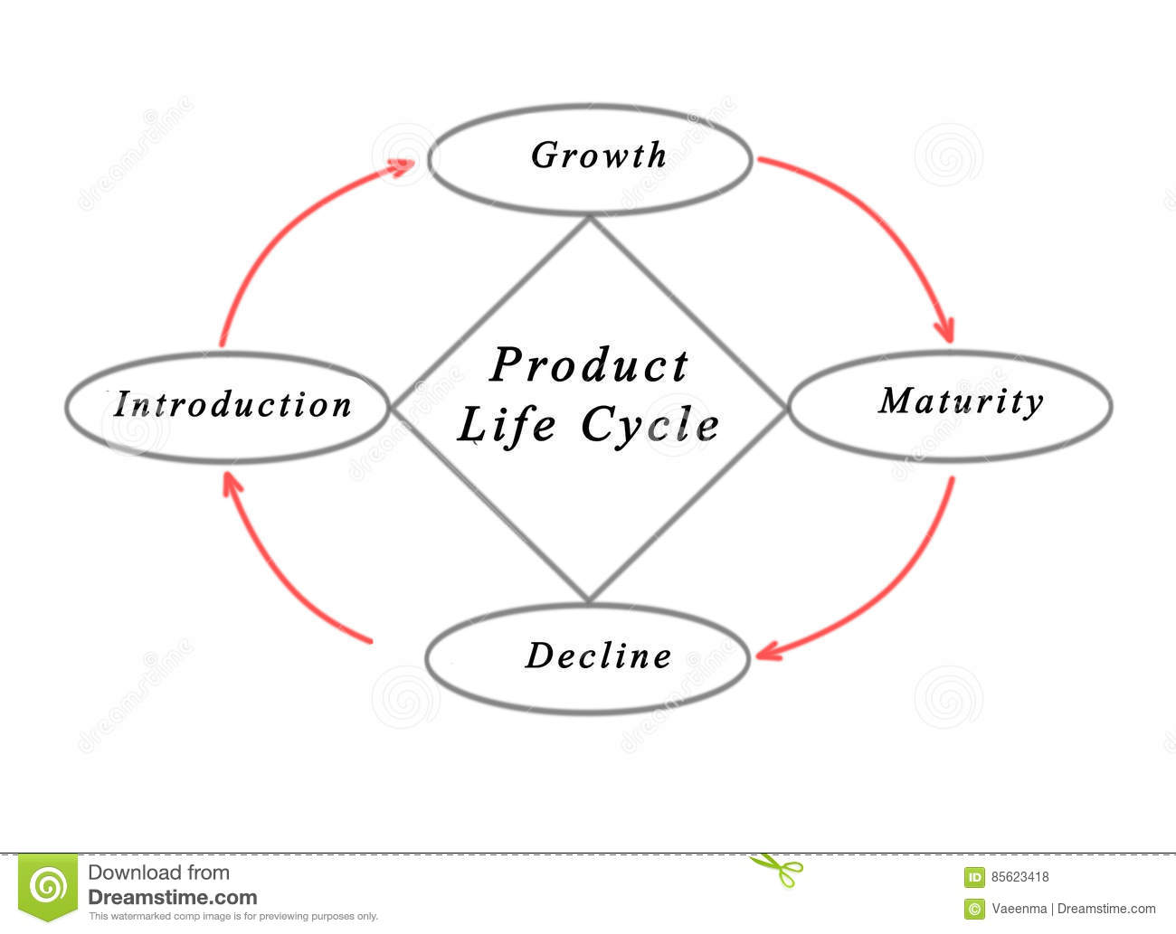 Diagram Of Product Life Cycle Cartoon Vector
