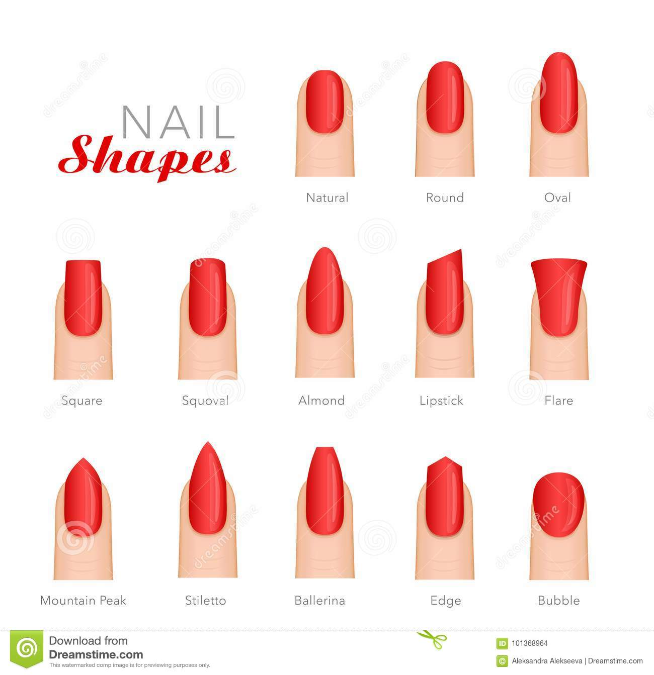 Professional Manicure Different Shapes Of Nails Vector Stock Vector
