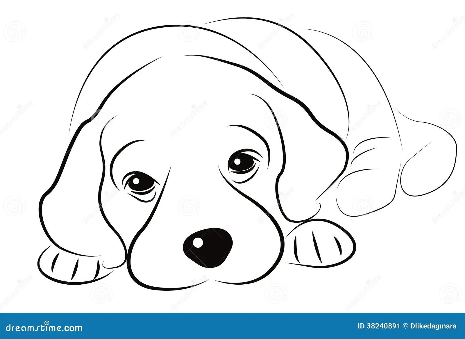 Puppy Sketch Stock Illustration Illustration Of Sketch