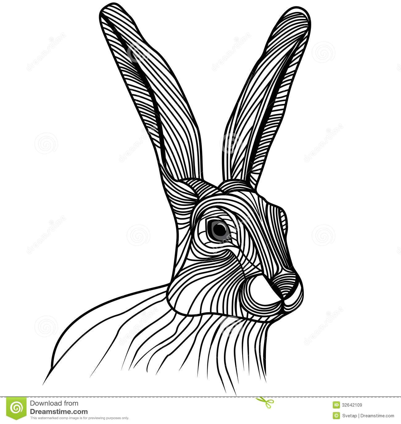 Rabbit Or Hare Head Vector Illustration Royalty Free Stock