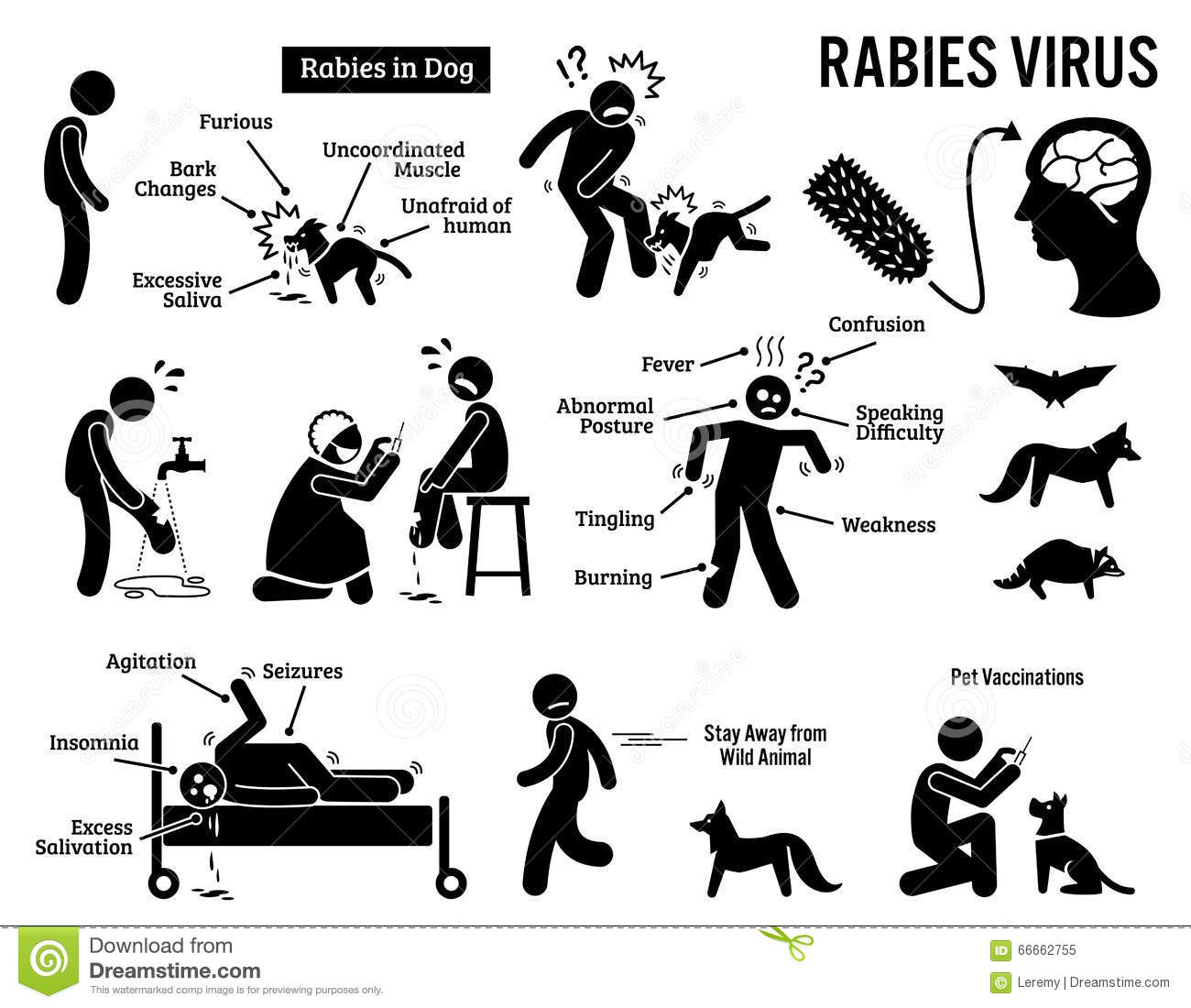 Rabies Virus In Human And Animal Clipart Stock Vector