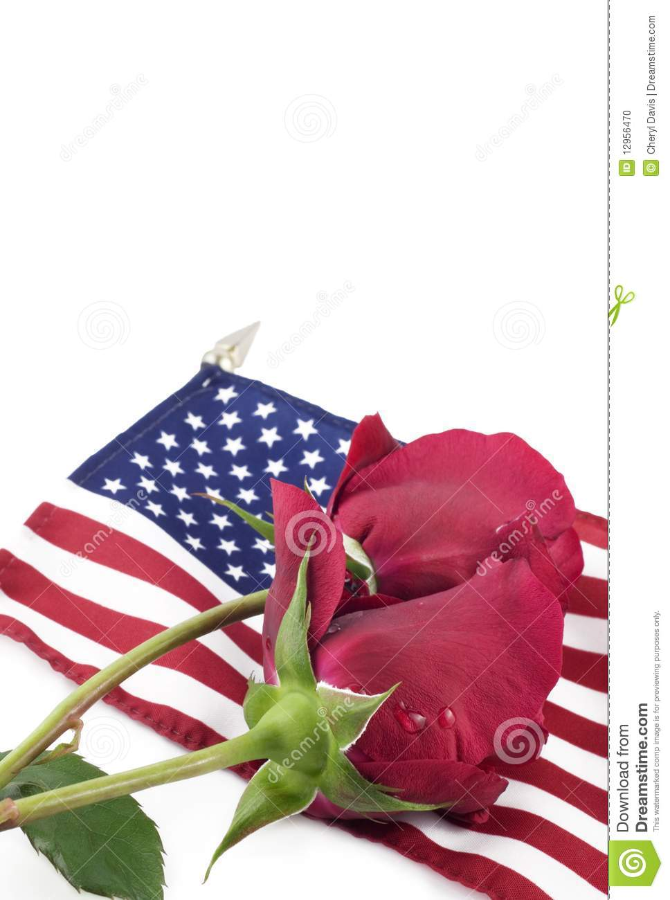 Red Roses On A Flag Stock Photo Image 12956470