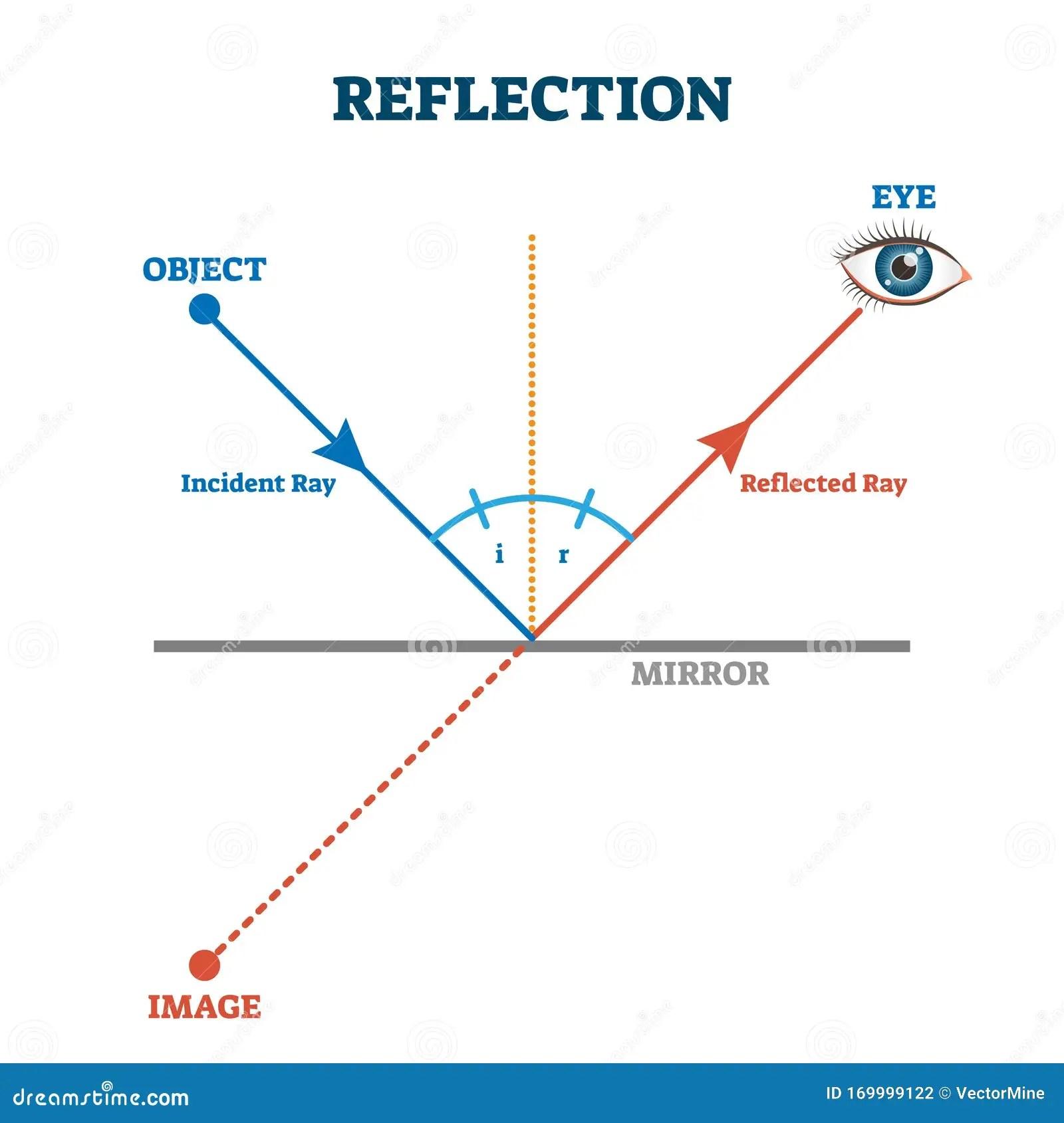 Reflection Ray Scheme Vector Illustration Diagram Stock
