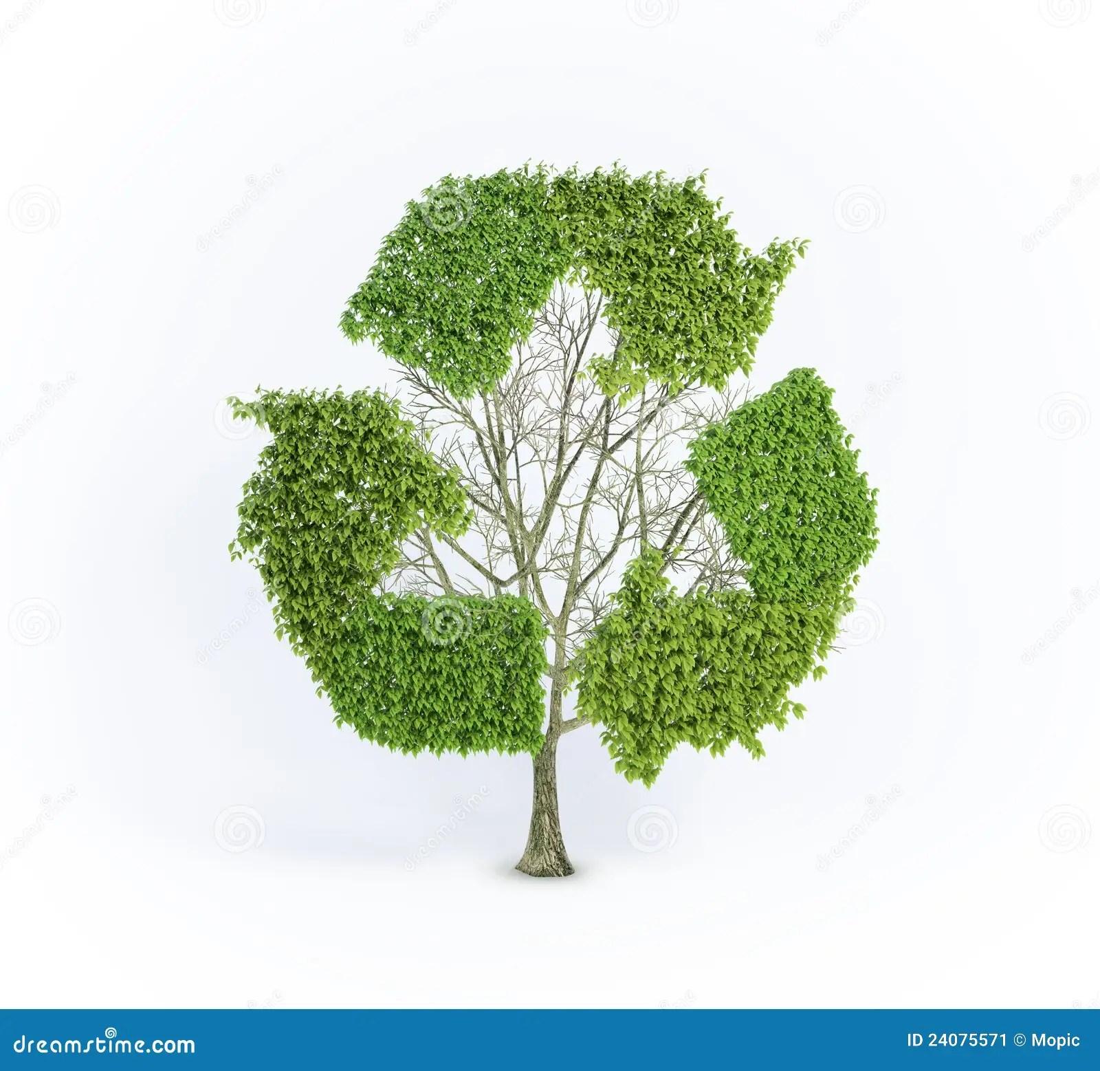 Renewable Tree Stock Illustration Illustration Of Light