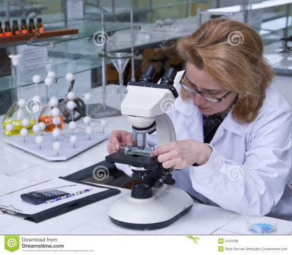 Research Work stock photo. Image of biology, researcher ...