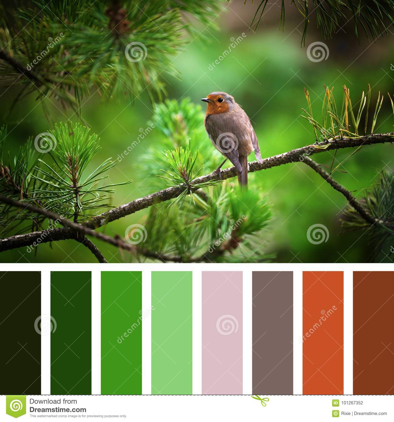 Robin And Christmas Tree Palette Stock Photo