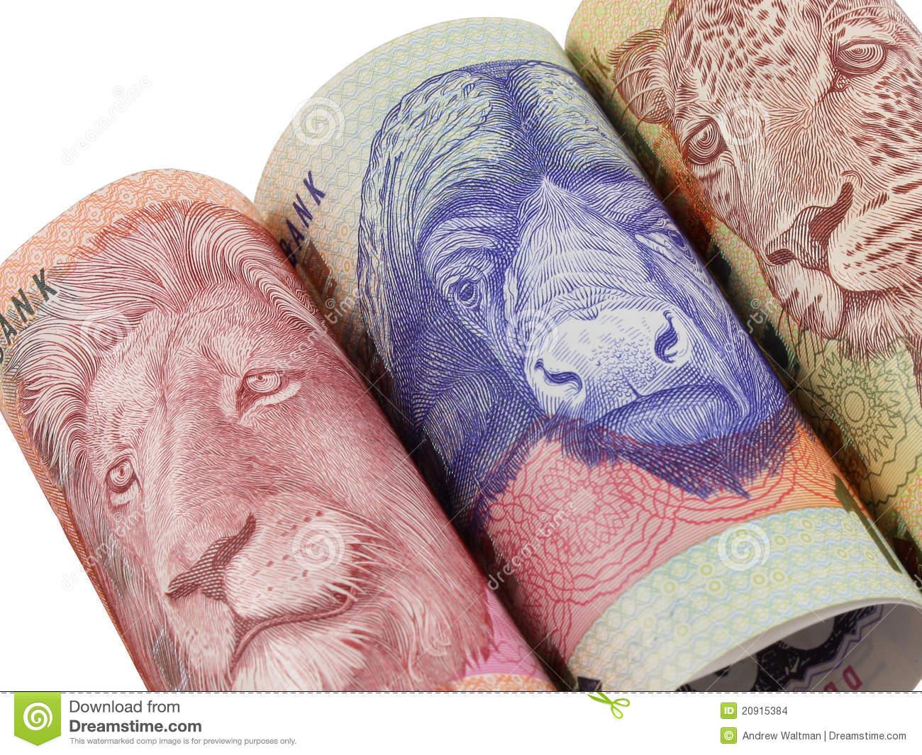 Rolled South African Money Notes Stock Images