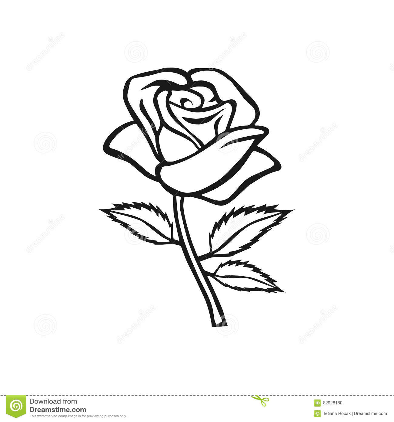 Abstract Black And White Rose Close Up Isolated Cartoon
