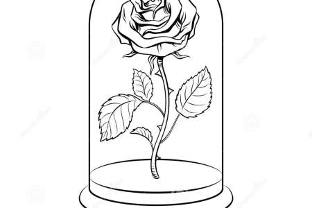Rose Flower Coloring Pages With Also Color