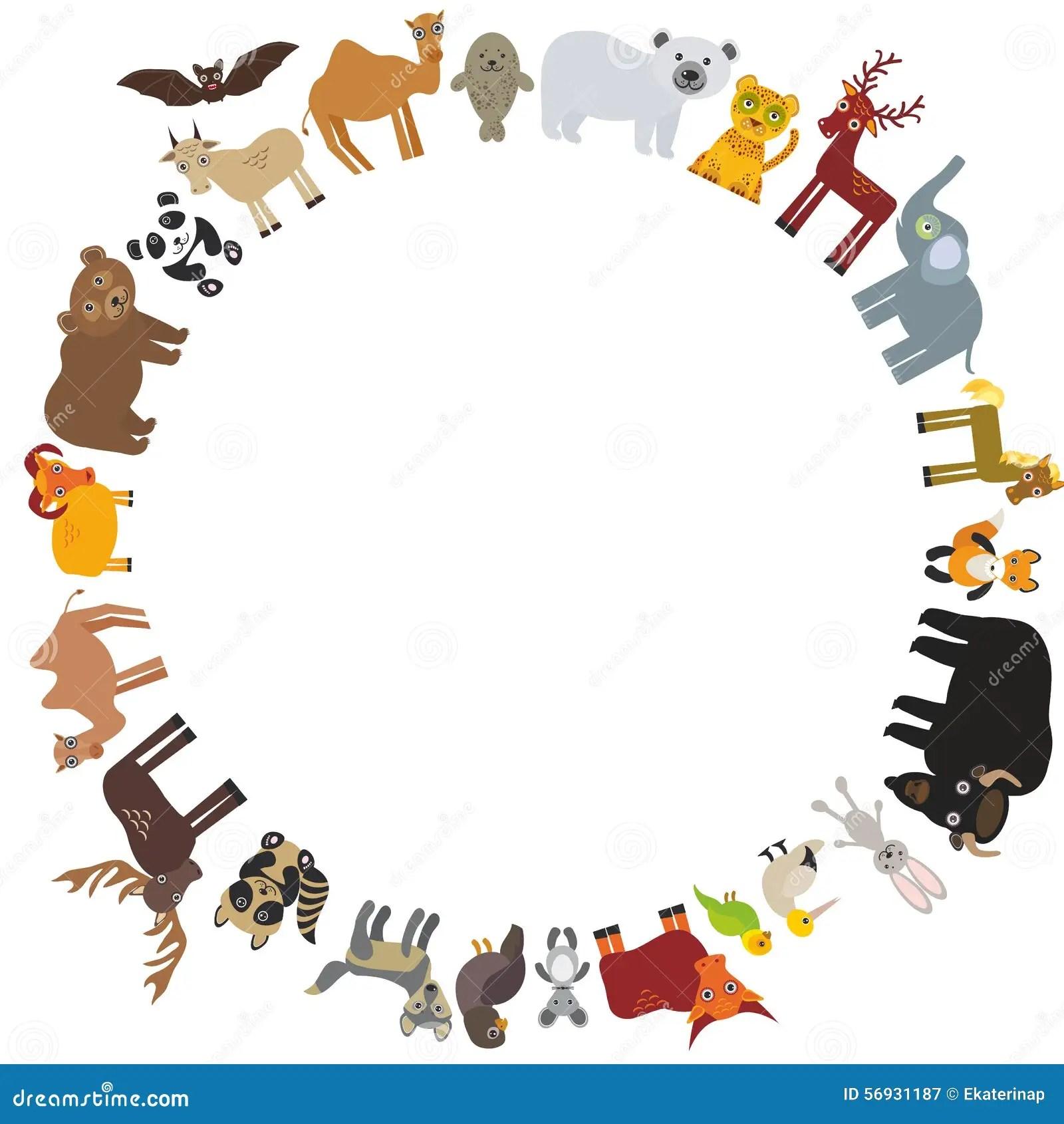 Over 1 000 Bilder Om Animals Djur P Pinterest