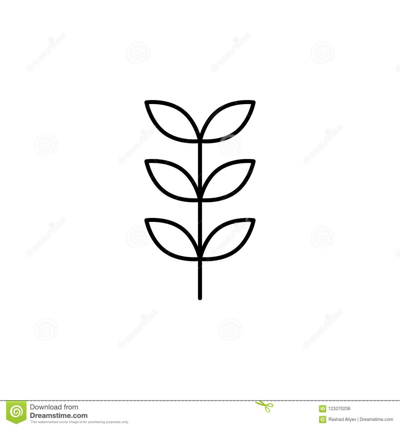 Element Of Nature Icon For Mobile Concept And Web Apps Thin Line Rowan Icon Can Be Used For Web And Mobile On White Background