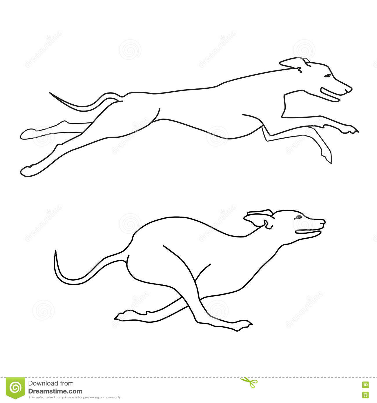 Greyhound Cartoons Illustrations Amp Vector Stock Images
