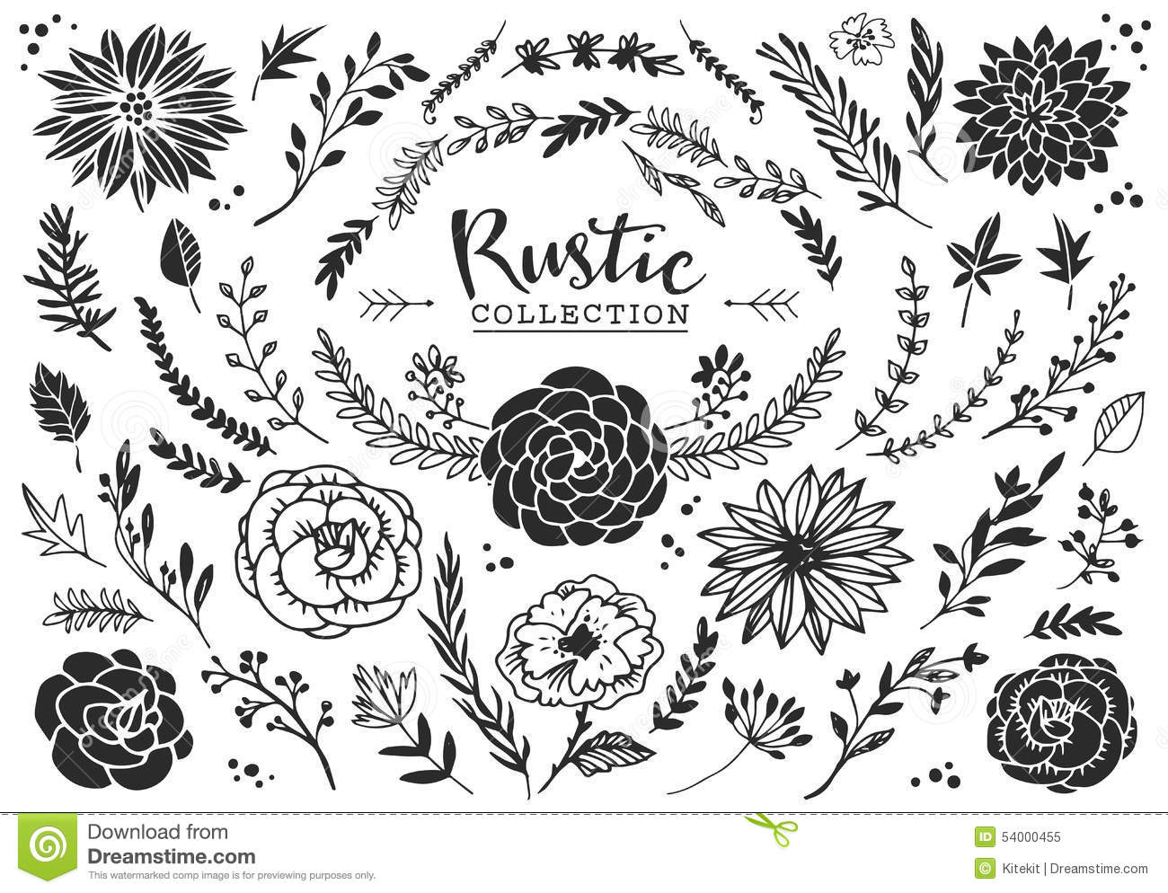 Rustic Decorative Plants And Flowers Collection Hand