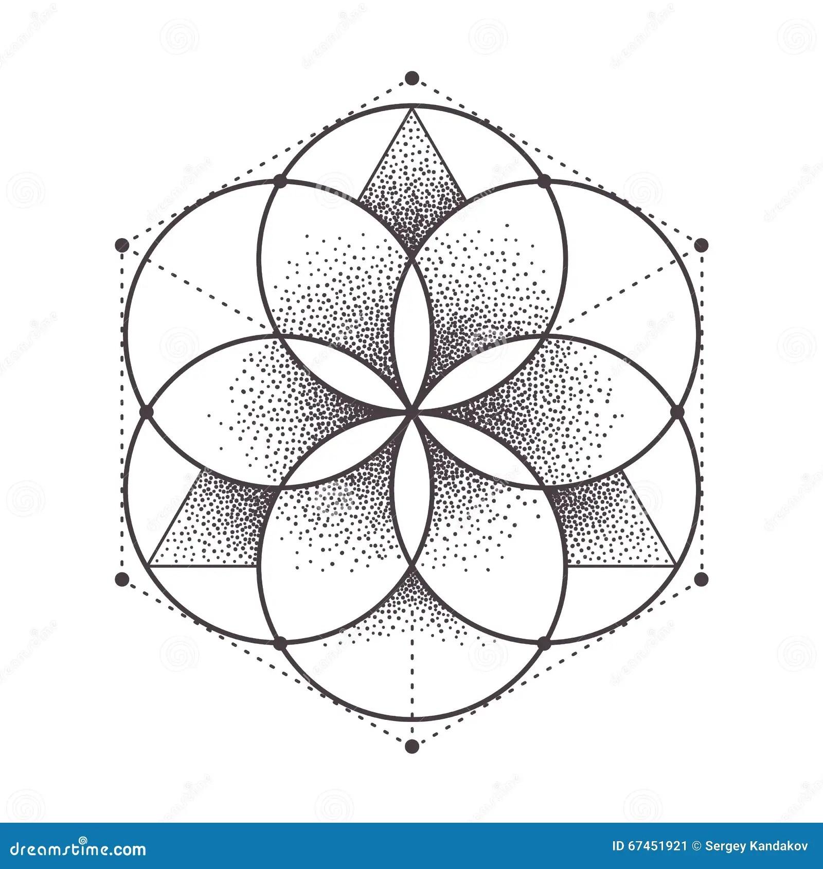Sacred Geometry Stock Vector Illustration Of Vector