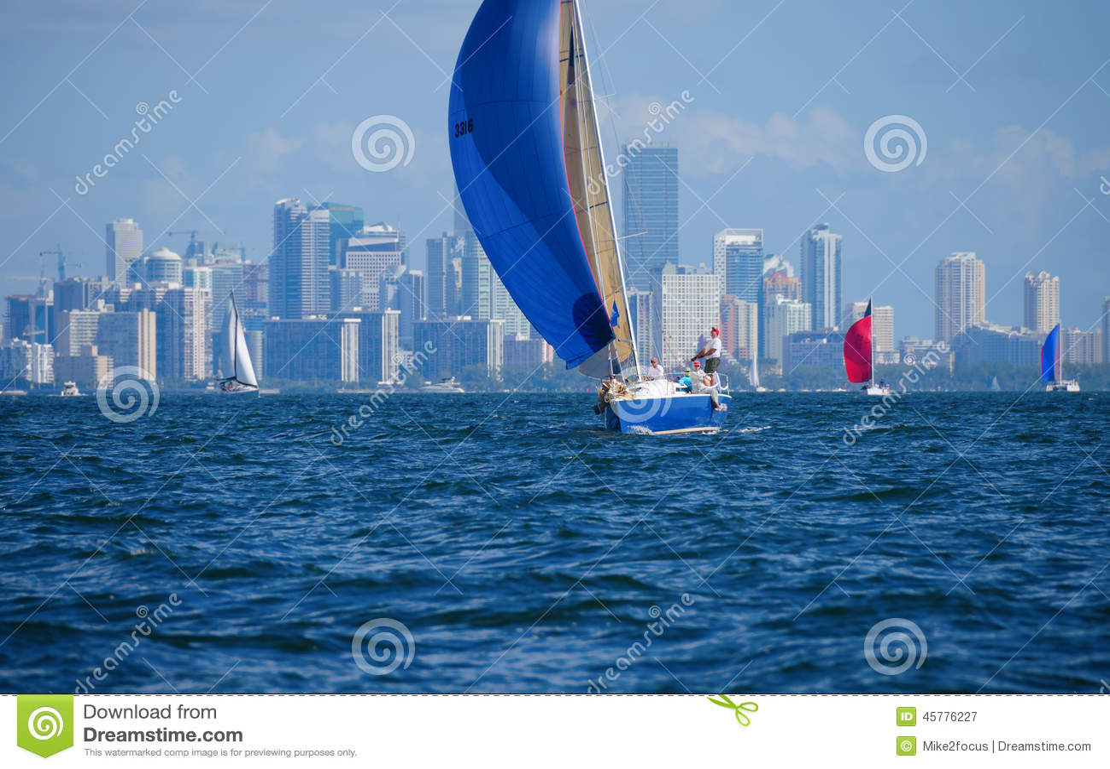 Sailing Regatta Sailboat Race W Miami Florida Skyline