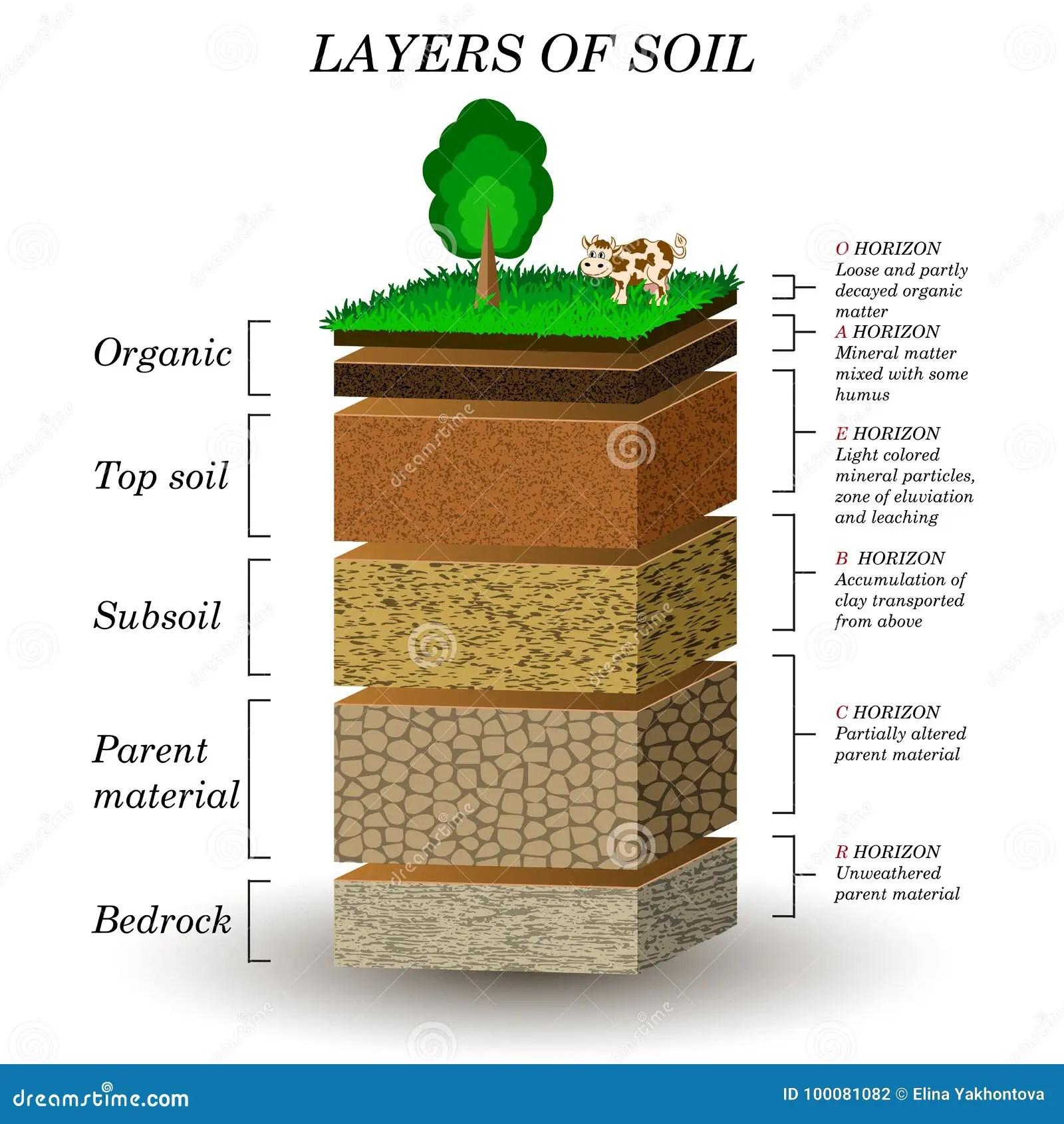 Schichten Boden Bildungsdiagramm Mineralpartikel Sand