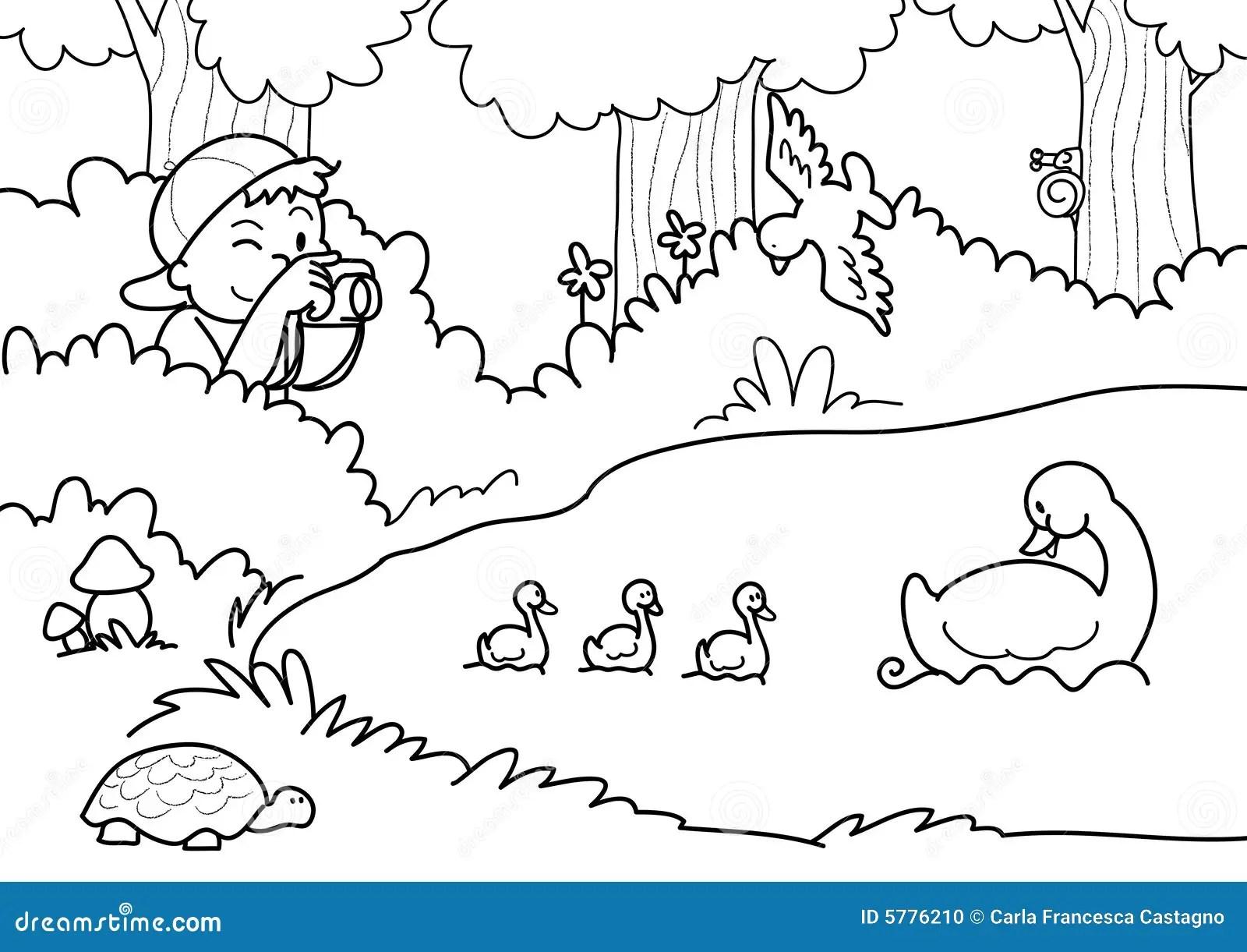 Schie Ennatur Vektor Abbildung Illustration Von Zicklein