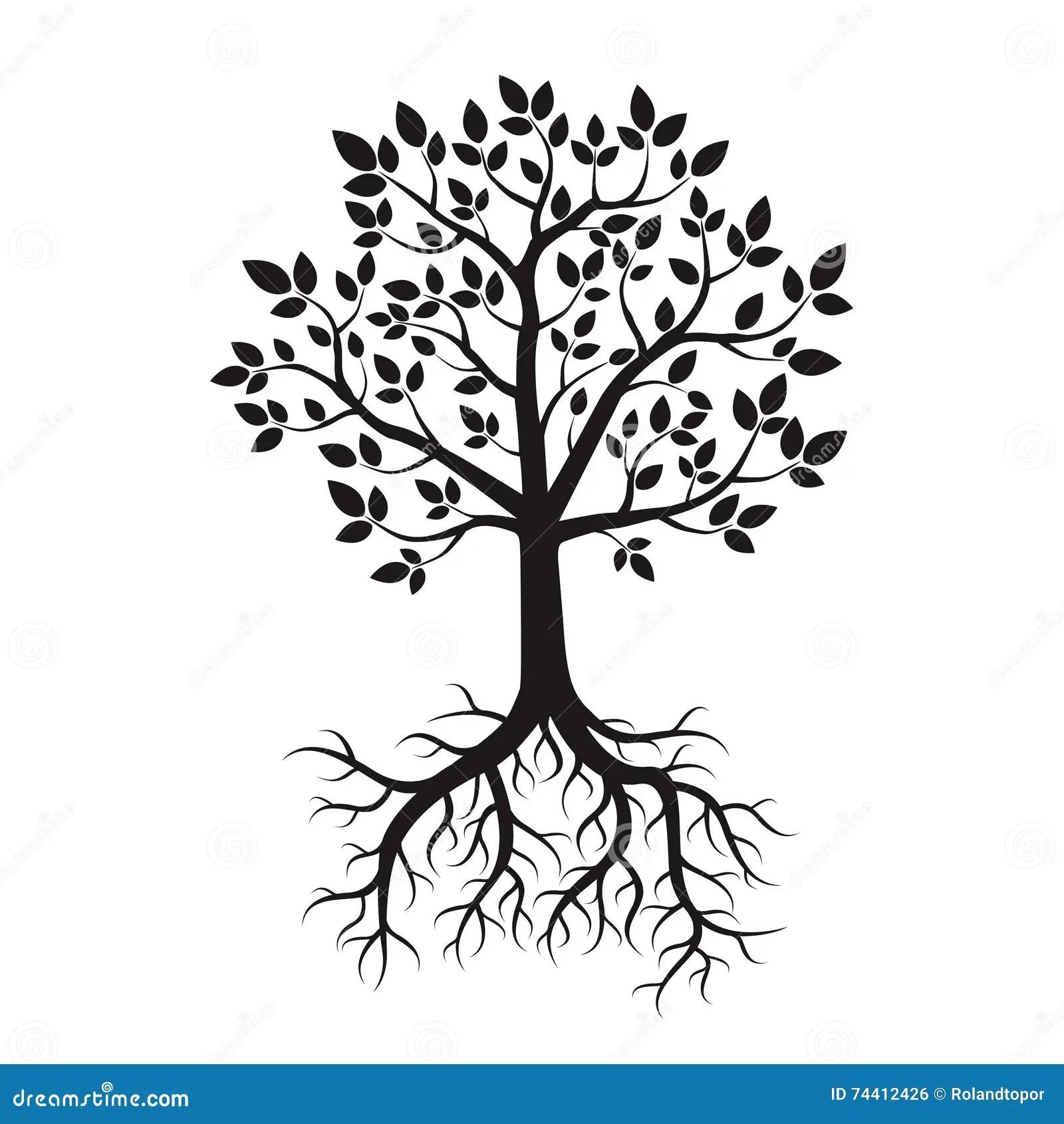 Schwarzer Baum Und Wurzeln Auch Im Corel Abgehobenen