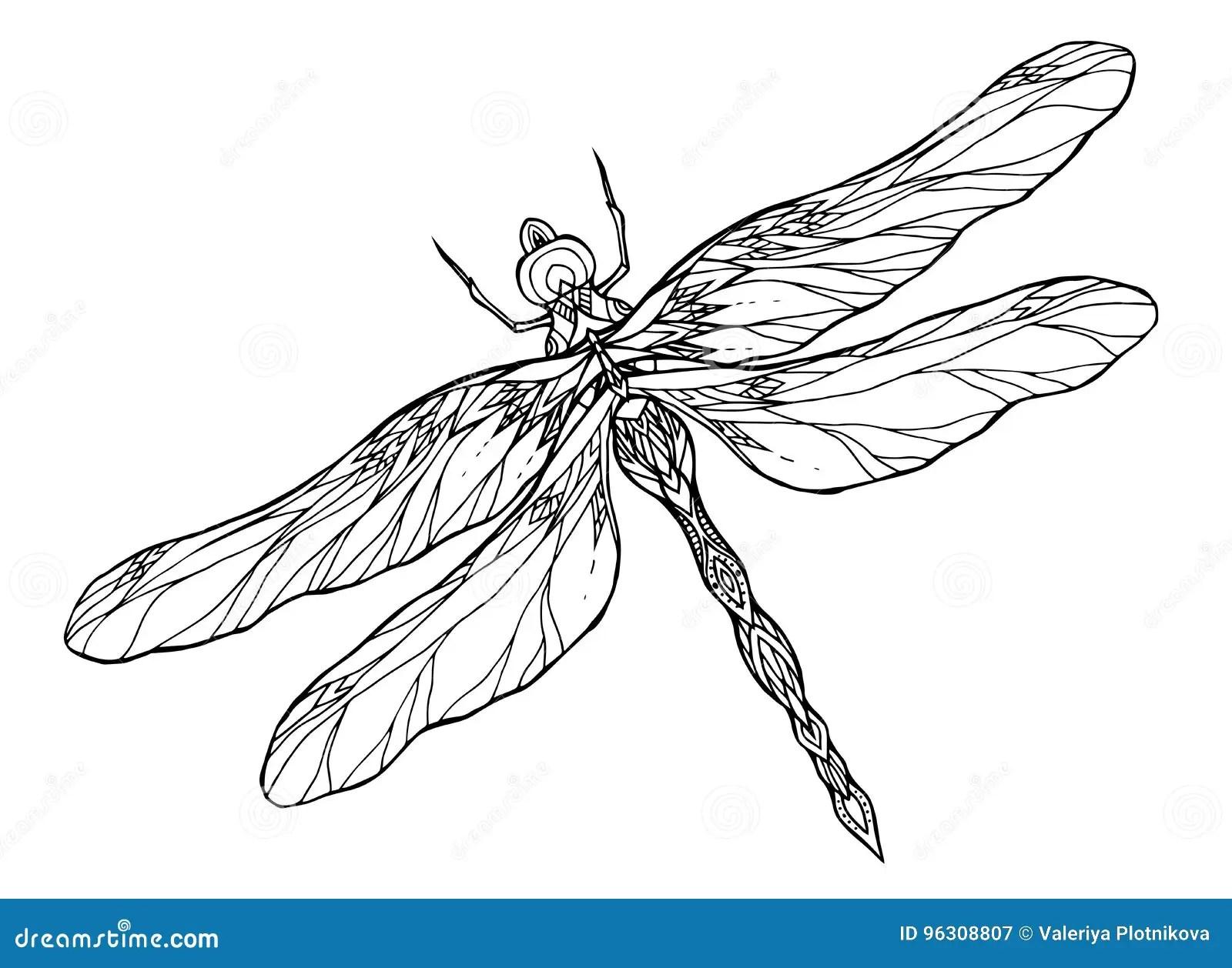 Schwarzweiss Libellenillustration Mit Einem Boho Muster