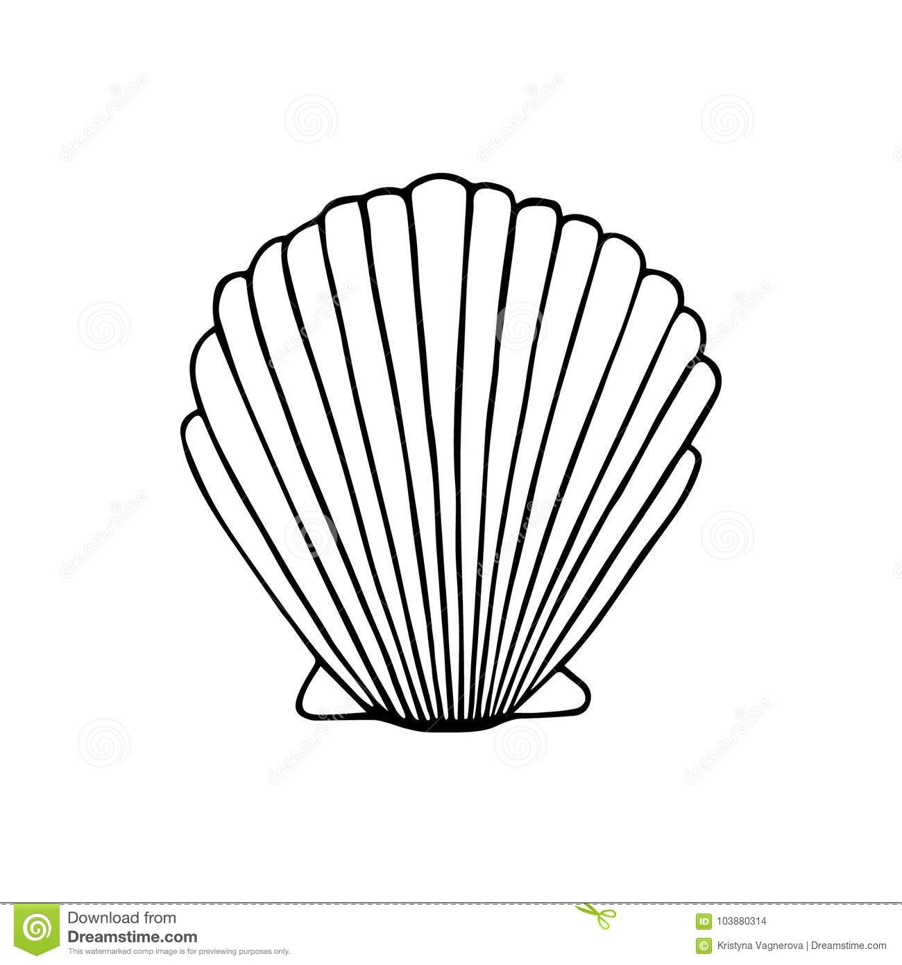 Sea Shell Hand Drawing Black Outline Stock Vector