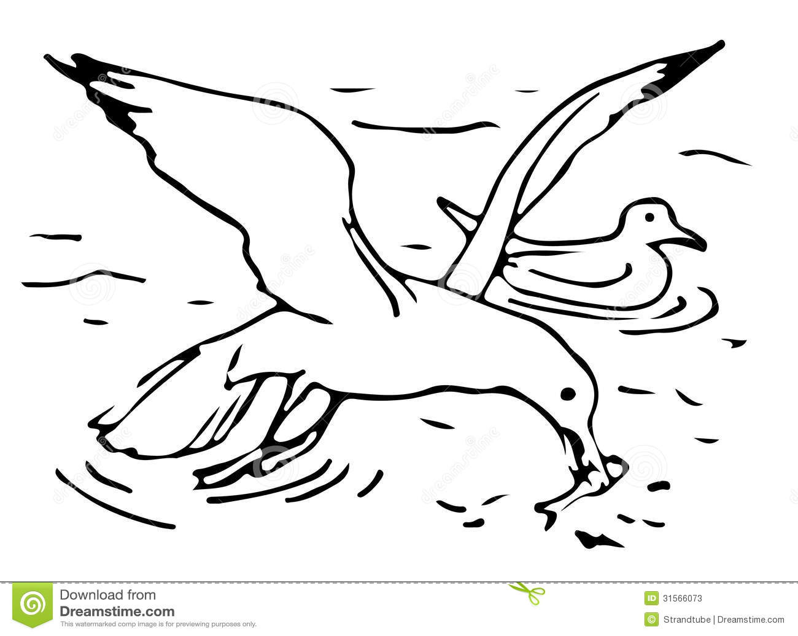 Seagulls Stock Illustration Illustration Of Shore Crab