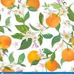 Seamless Orange Pattern With Tropic Fruits Leaves Daisy Flowers Background Hand Drawn Illustration In Watercolor Style Summer Stock Vector Illustration Of Branch Elegant 148132050