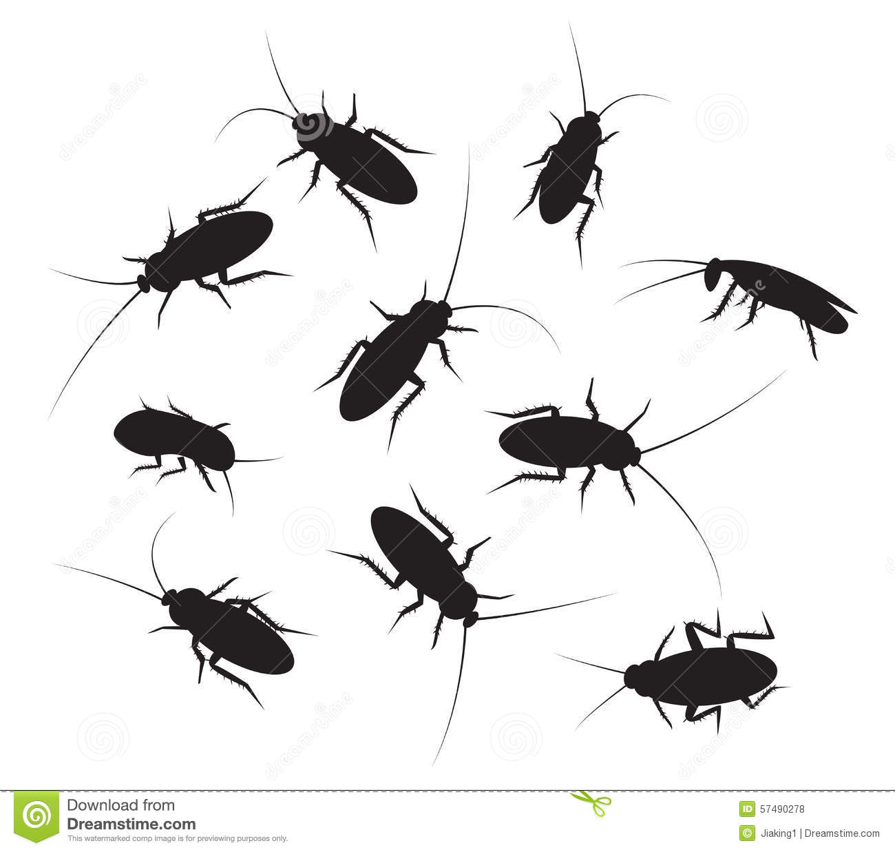 Set Of Black Silhouette Cockroach With Detail Stock Vector