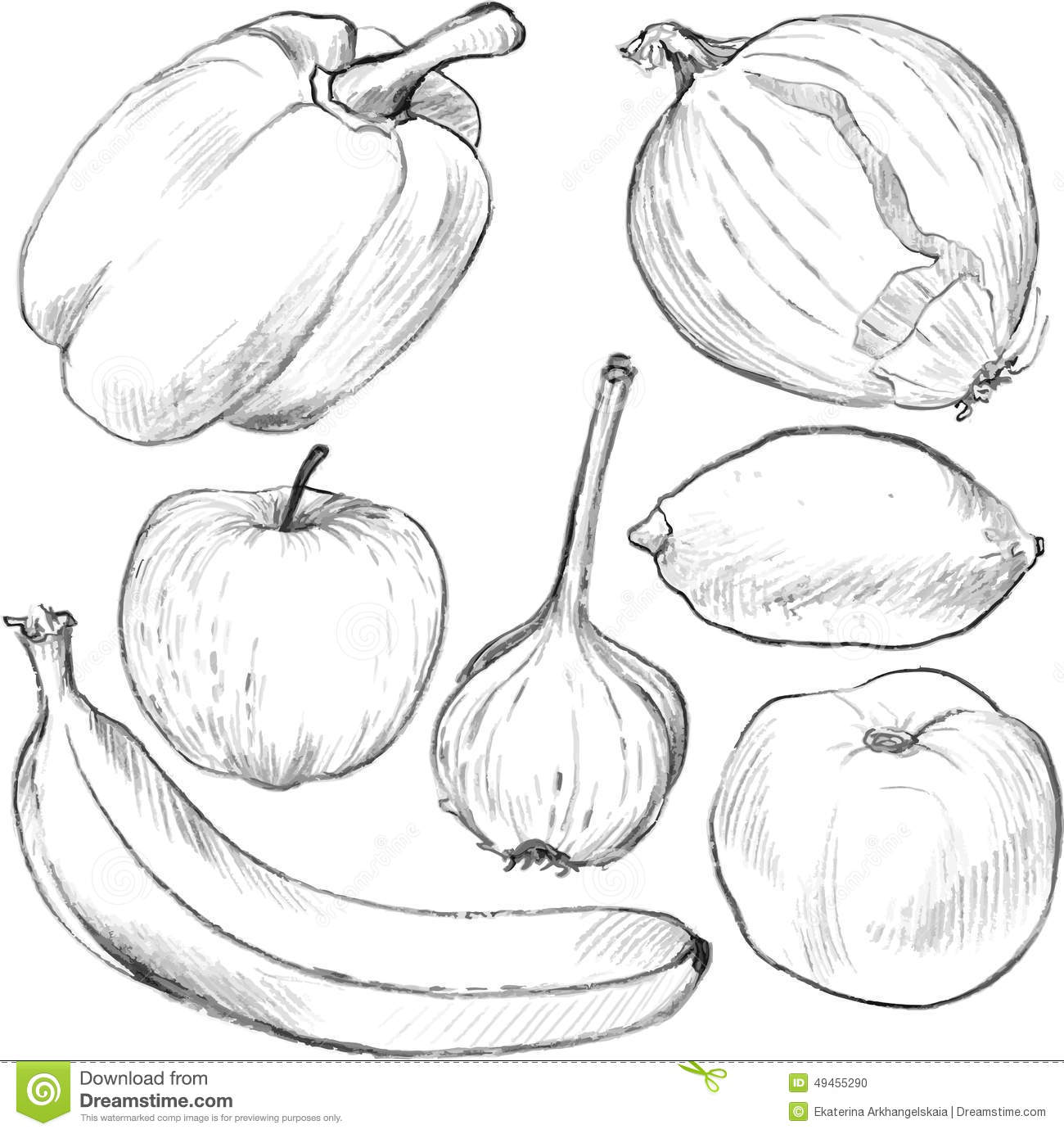 Set Of Drawing Vegetables And Fruits Stock Vector