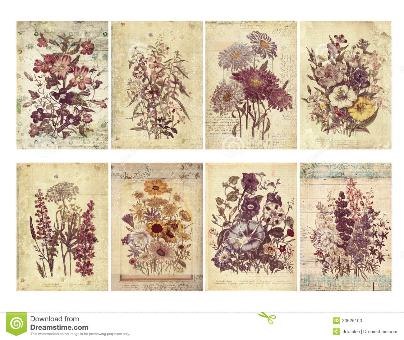 Set Of Eight Shabby Vintage Floral Cards With Textured
