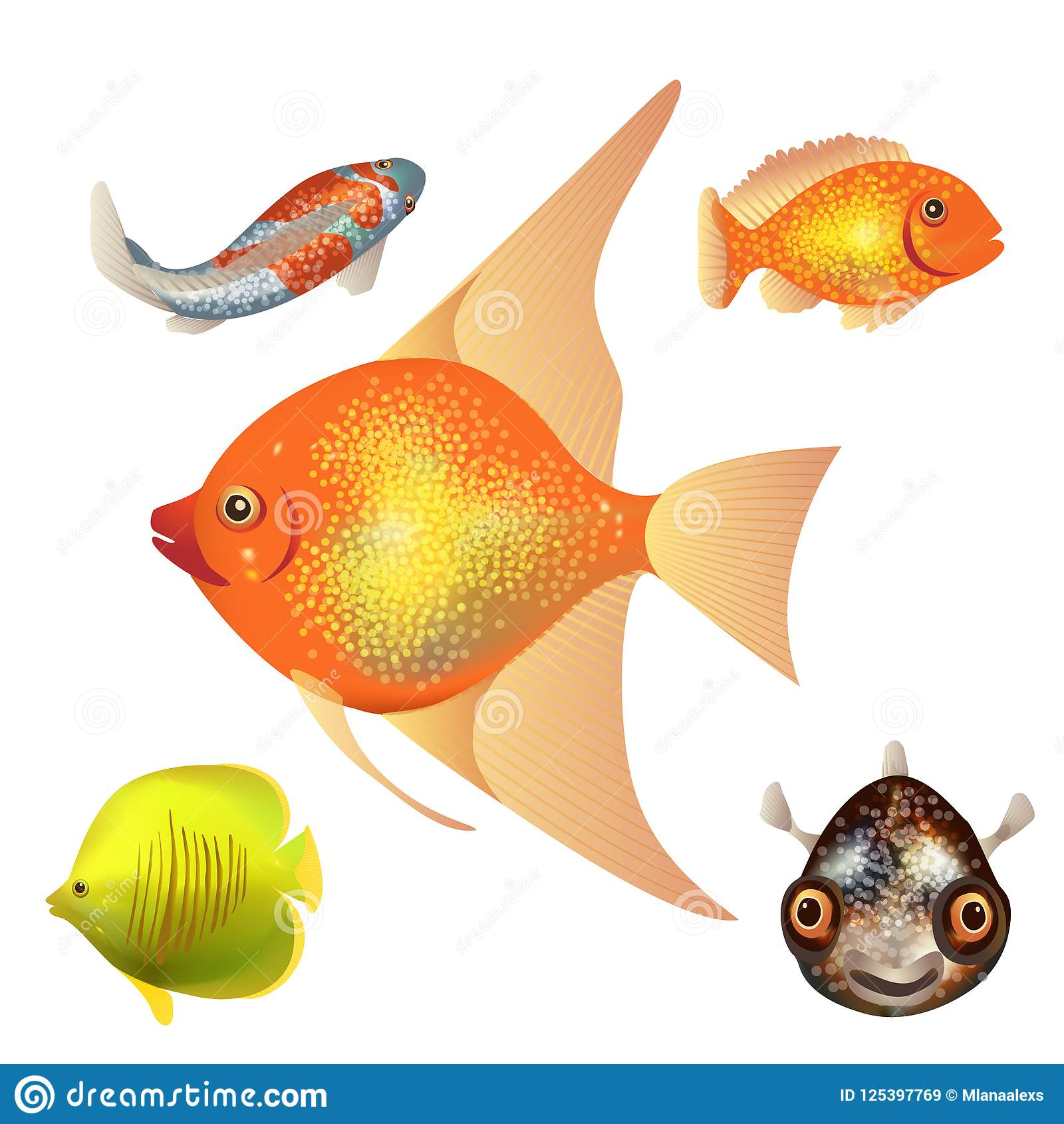 Set Of Fish Different Types Of Fish Colorful With Bright Scales Stock Vector Illustration Of Clipart Background 125397769