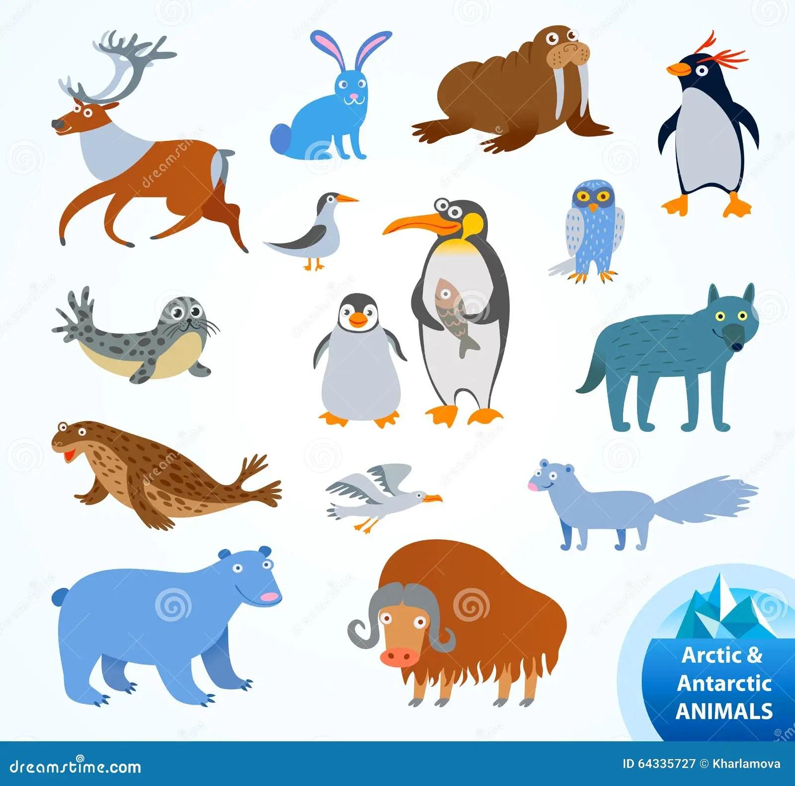Set Funny Arctic And Antarctic Animals Stock Vector