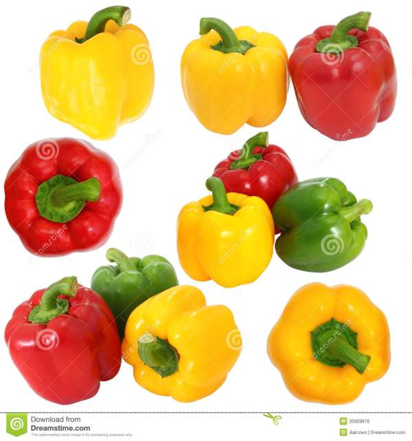Red And Yellow Bell Pepper On White Background Stock