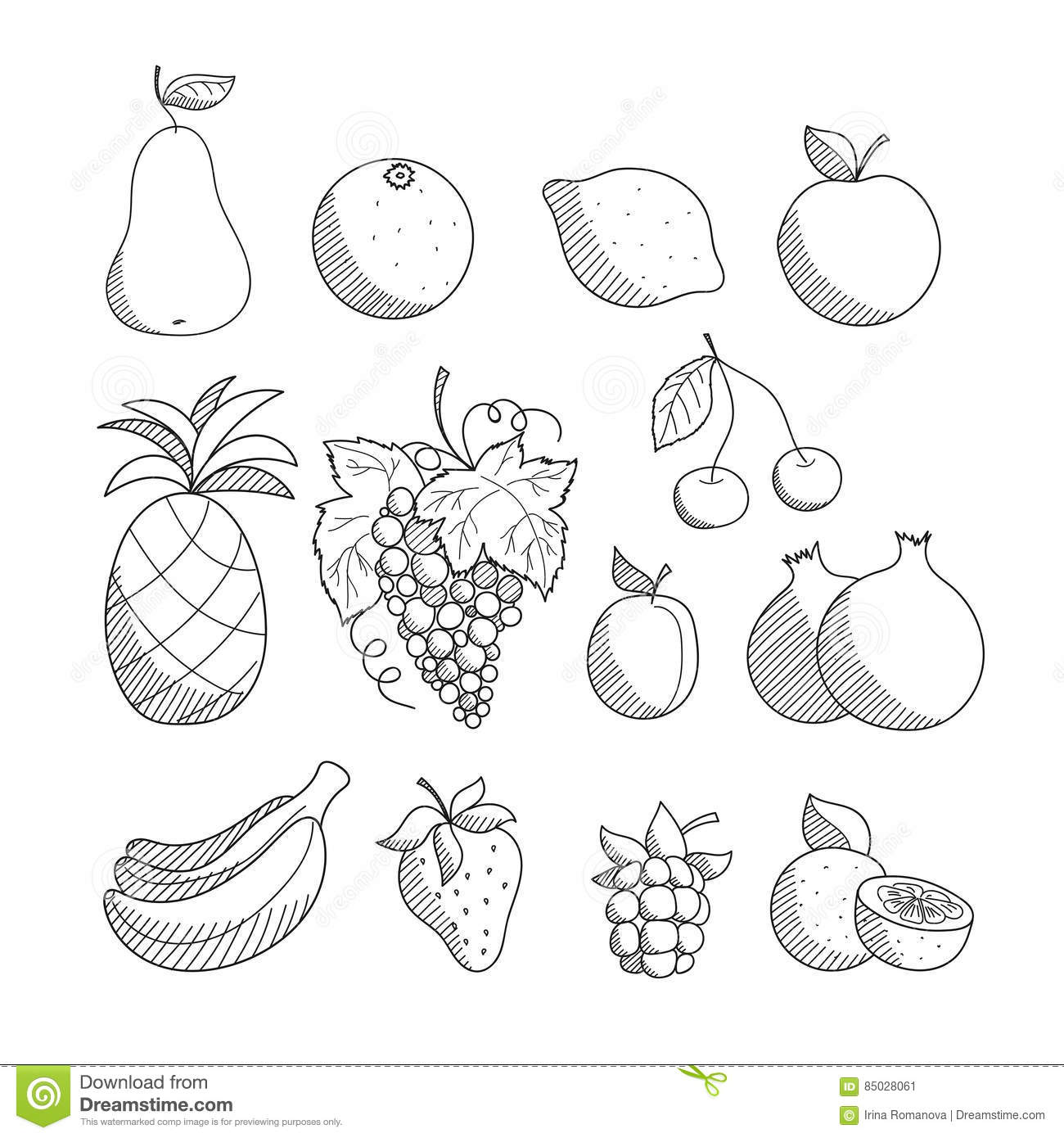 Set Of Sketched Hand Drawn Linear Friuts And Berries