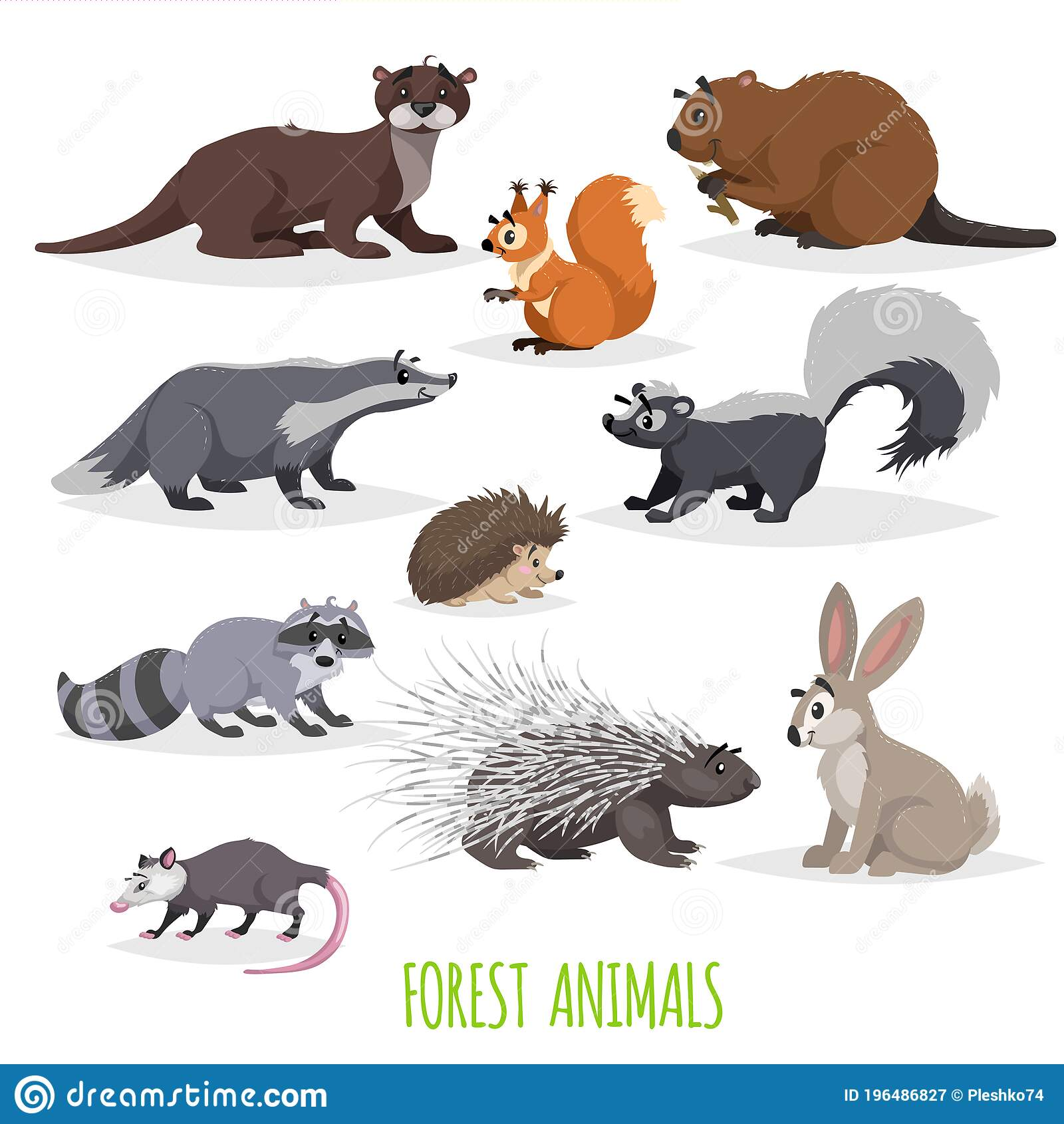 Colorado i some of the animals that live in colorado are pronghorn, elk, mule deer, mountain li. Set Of Woodland And Forest Little Animals Europe And North America Fauna Collection Raccoon Hedgehog Hare Squirrel Badger Stock Vector Illustration Of America Animals 196486827