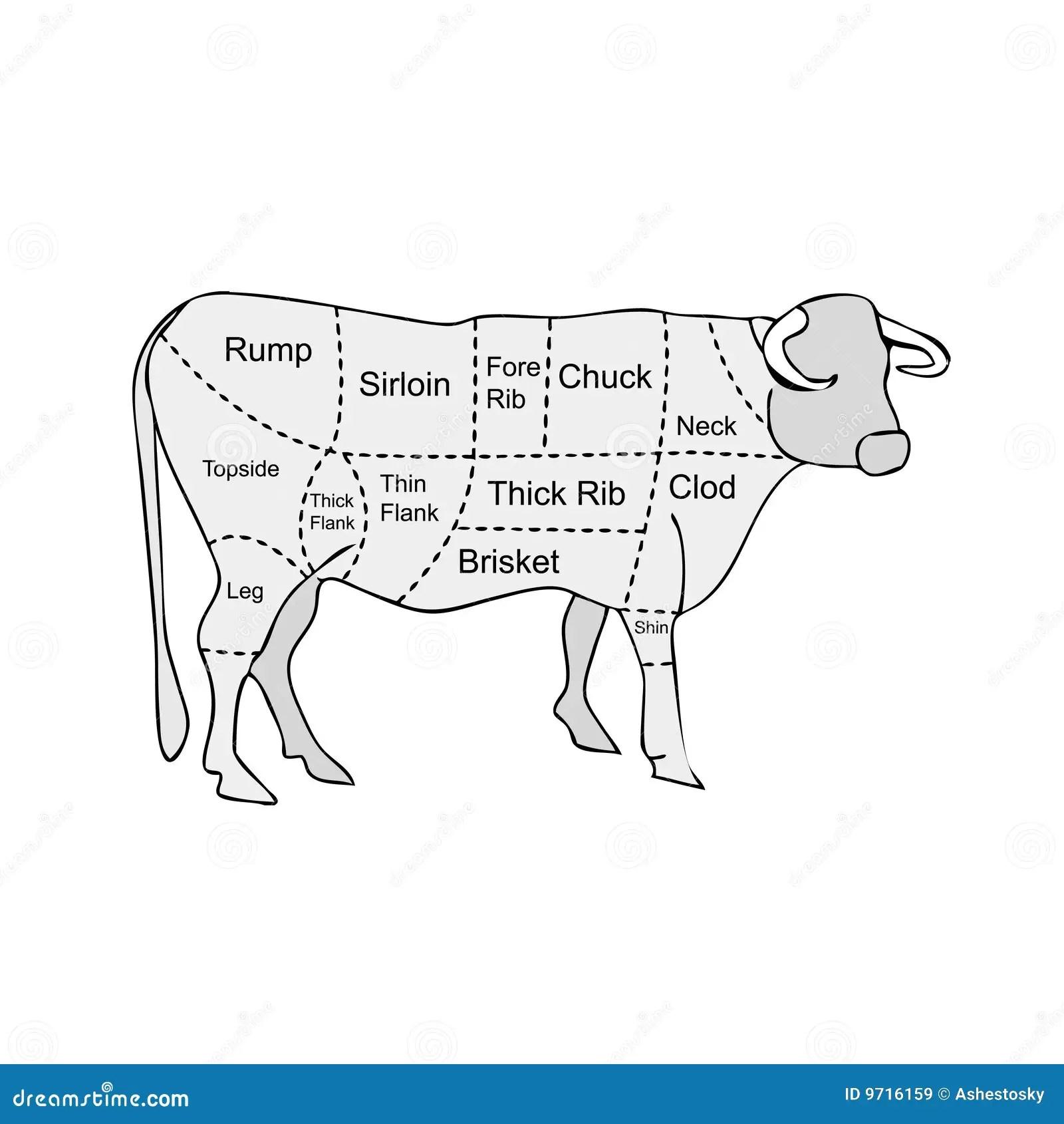 Sezioni Della Carne Da Macello Della Mucca Illustrazione