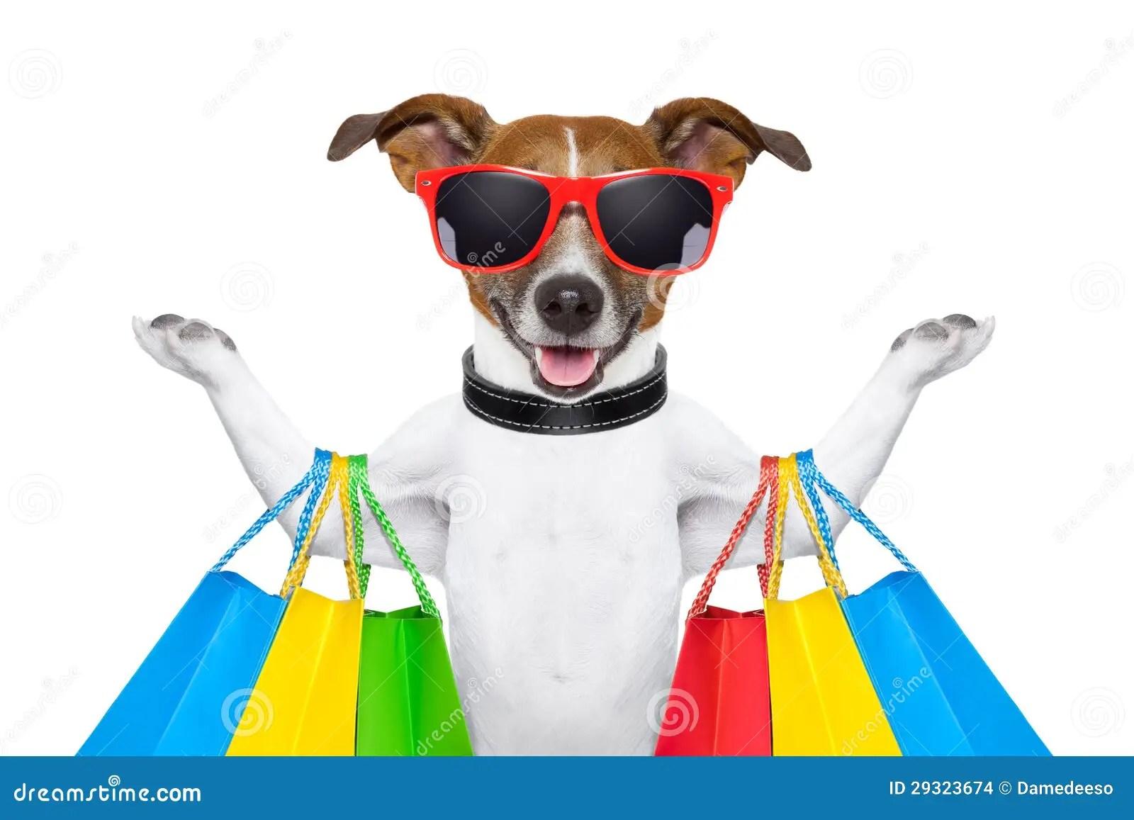 Happy Birthday Jack Russell Terrier