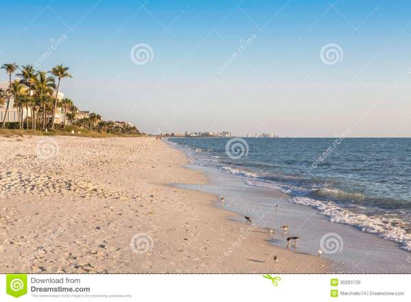 Shoreline In Naples, Florida Royalty Free Stock Images ...