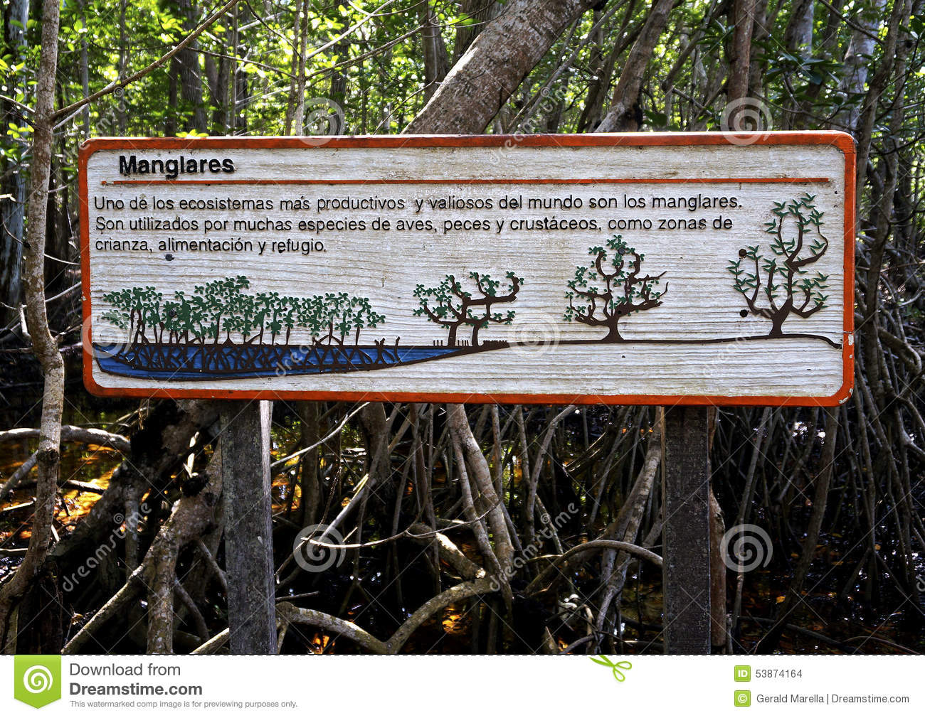 Under tort law, those who own land owe certain duties to people who might enter that land, even trespassers. Sign At A Protected Mangrove Forest Editorial Stock Image Image Of Swamp Protected 53874164