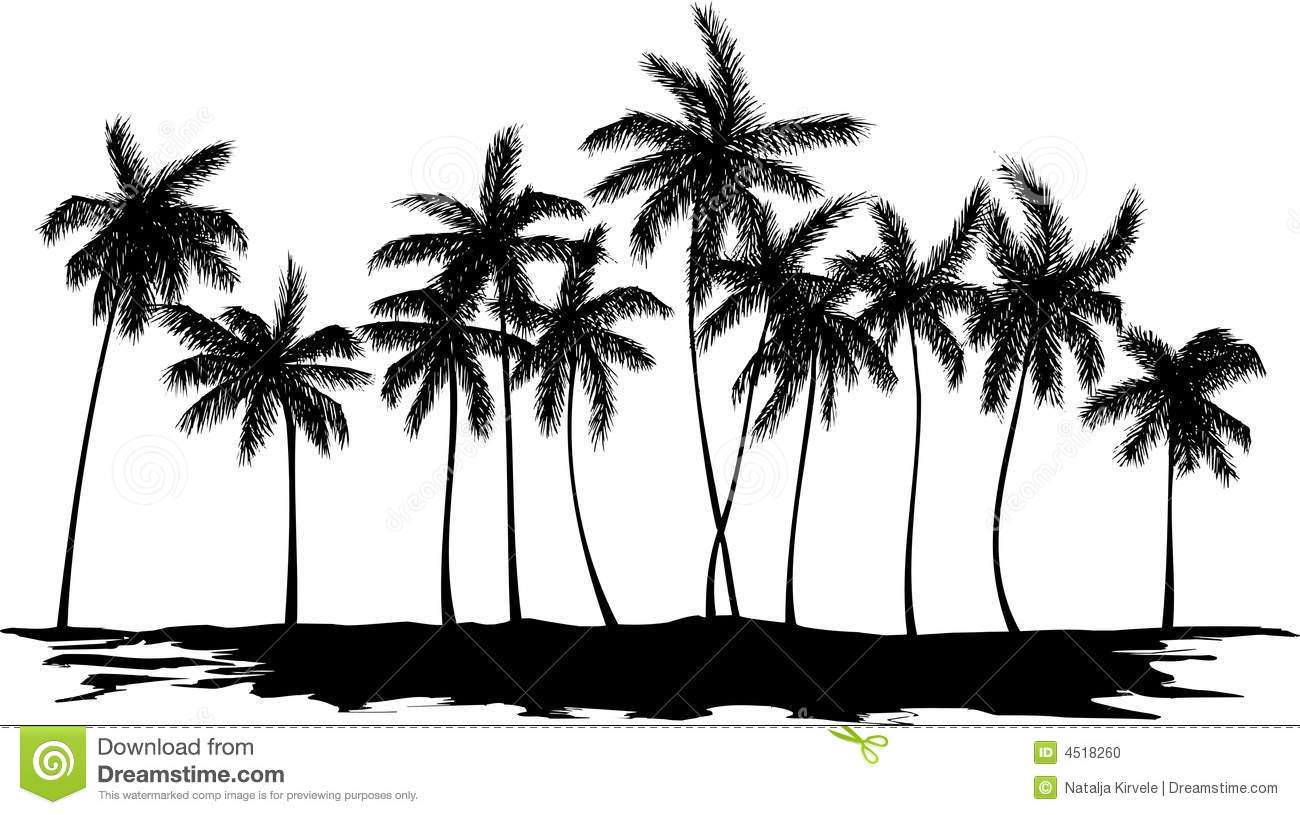 Silhouette Of Palm Trees Stock Vector Illustration Of