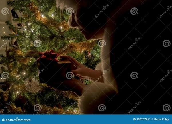 Silhouettte Госпожи Клауса с пакетом деревом Стоковое ...