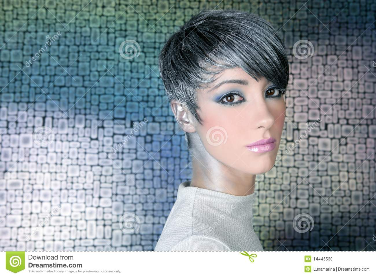 Silver Futuristic Hairstyle Makeup Portrait Stock Photo