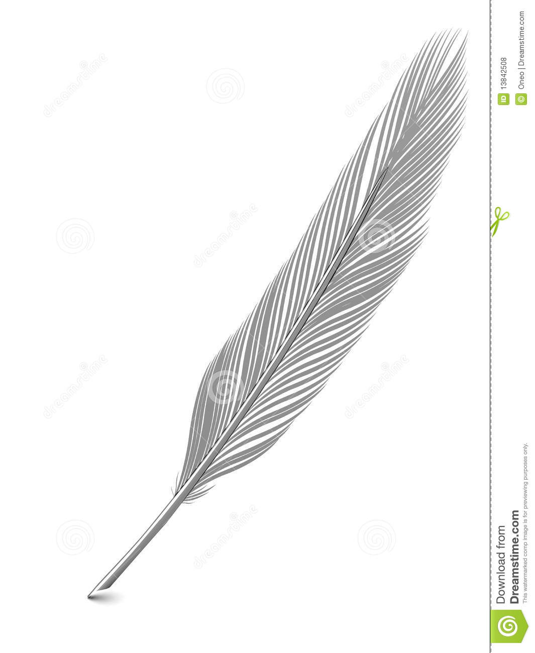 Silver Or Platinum Feather Quill Over White Stock Photo