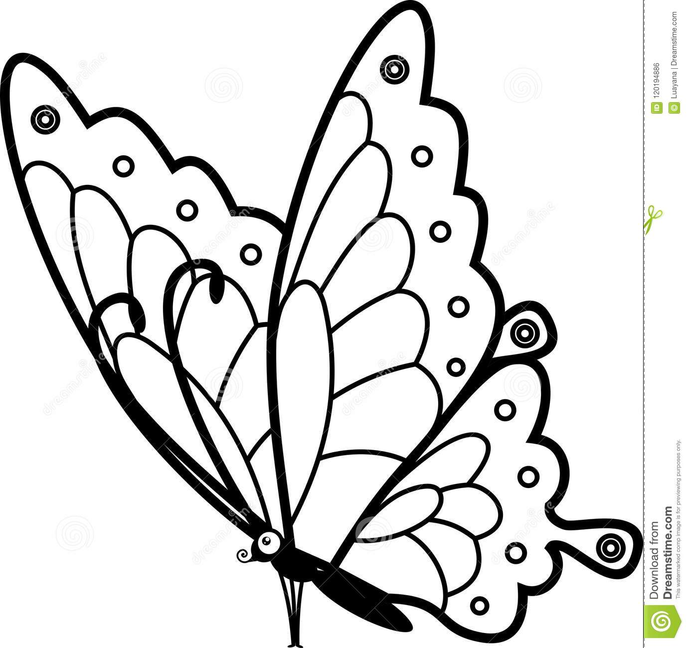 Sitting Butterfly Coloring Page Stock Vector